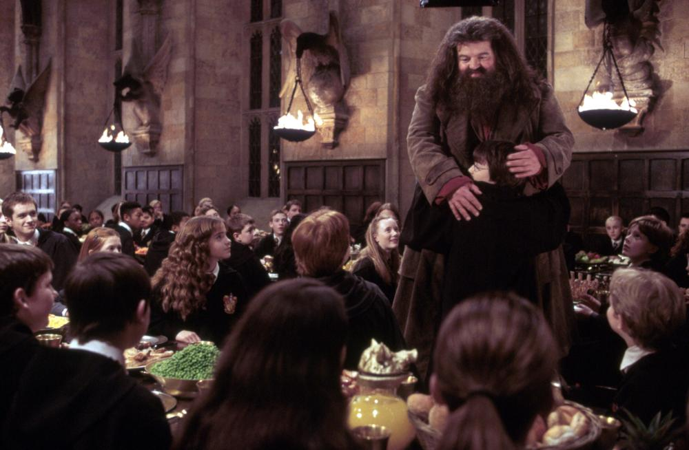 Robbie Coltraine as Hagrid in Harry Potter and the Chamber of Secrets
