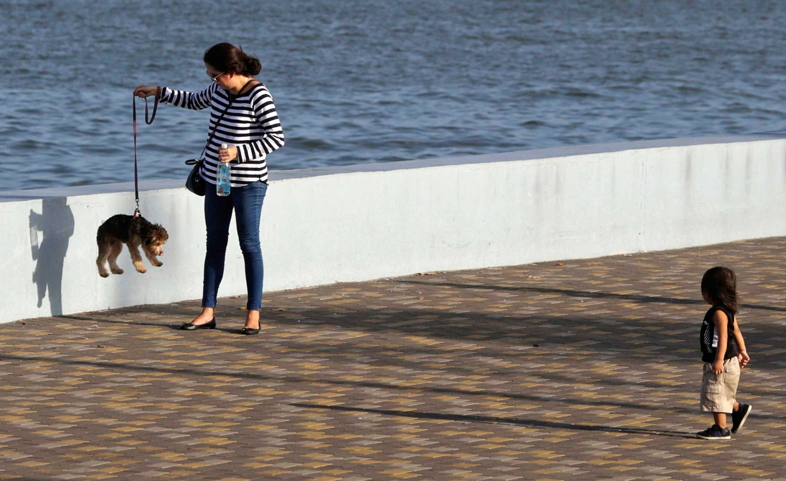 A woman lifts a dog on a leash along the seafront in Panama City Jan. 6, 2015.