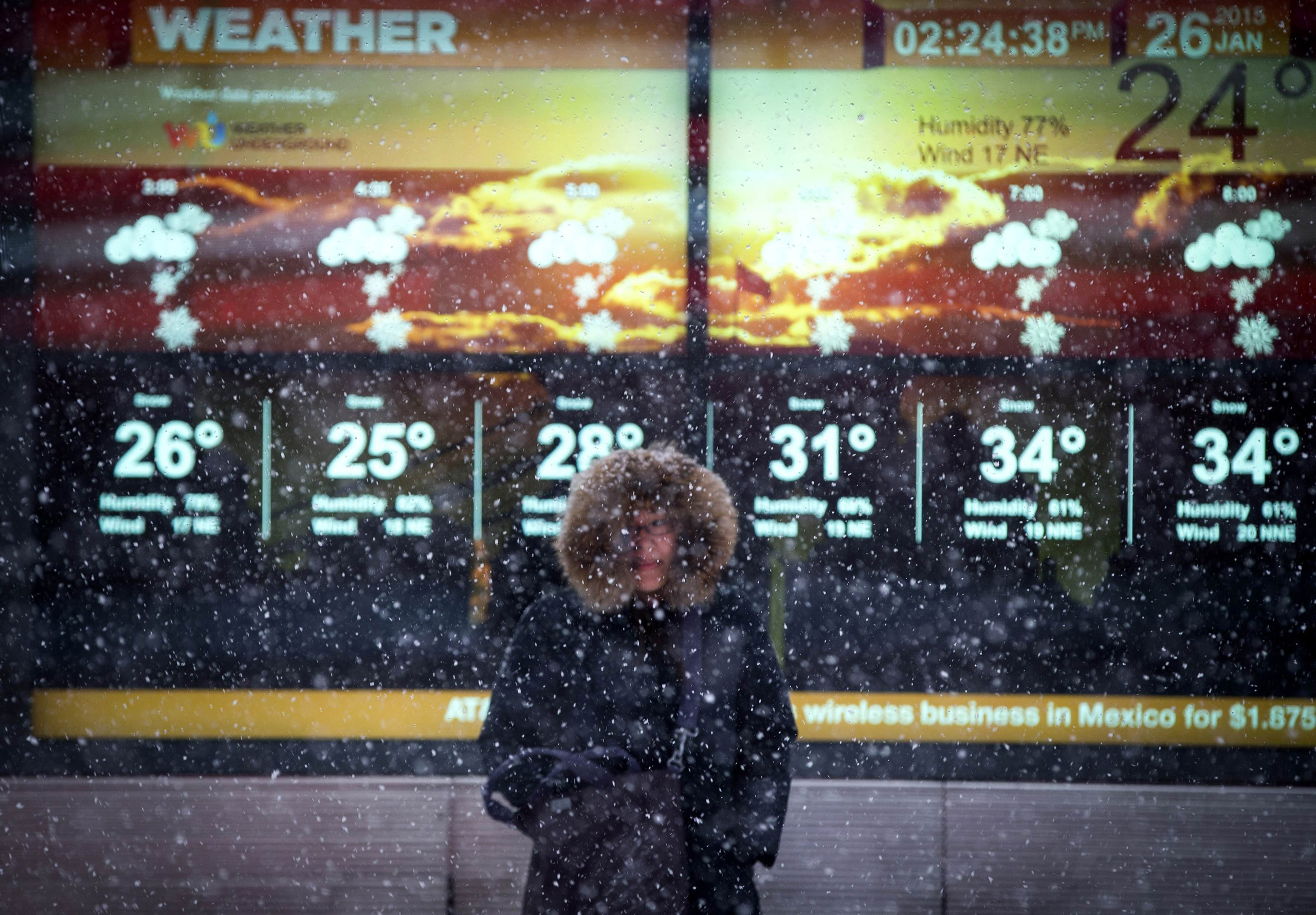 A woman stands in falling snow in front of an electronic sign displaying the weather forecast in Times Square in New York City on Jan. 26, 2015.
