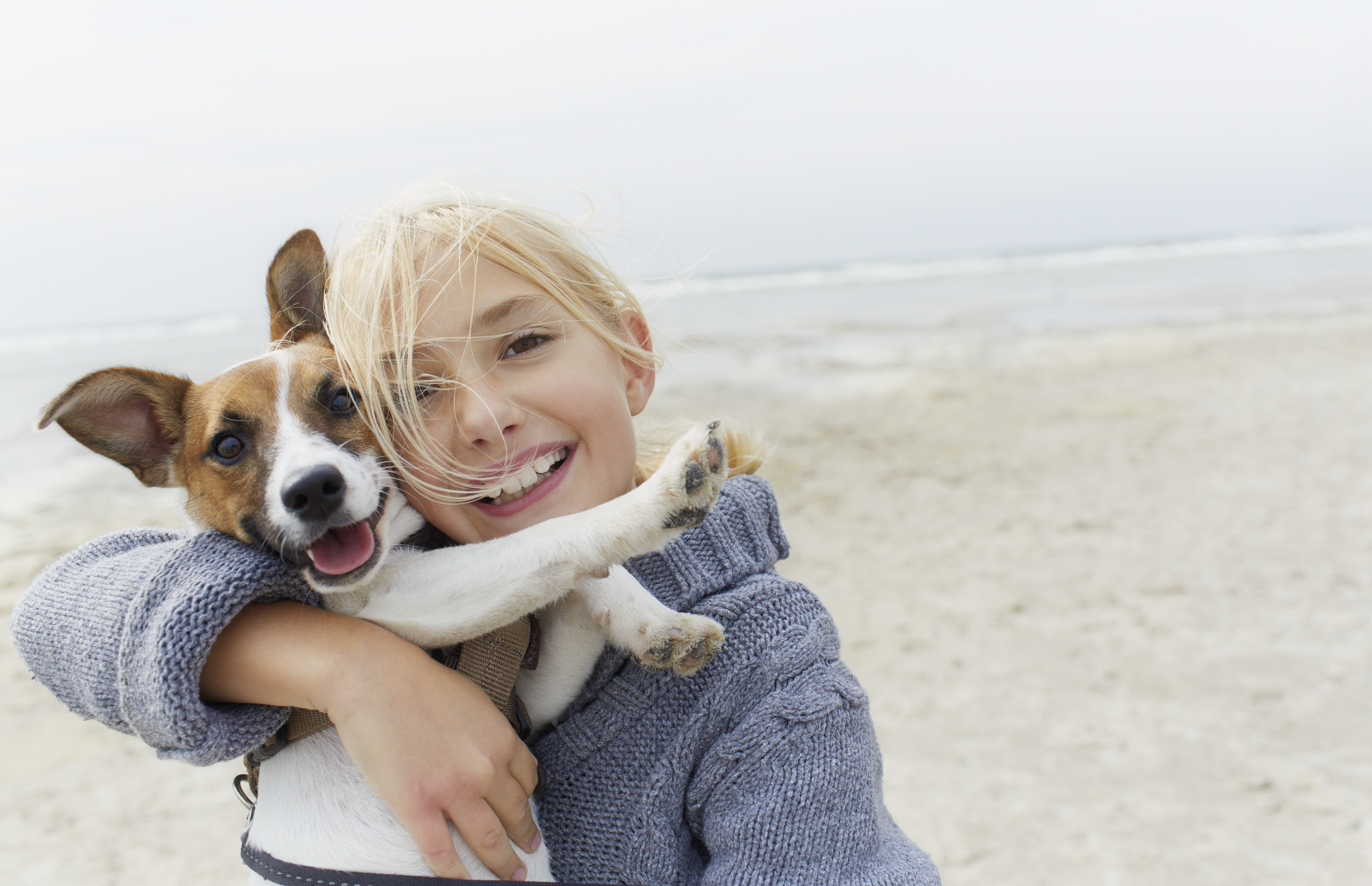 Happy girl hugging dog on the beach