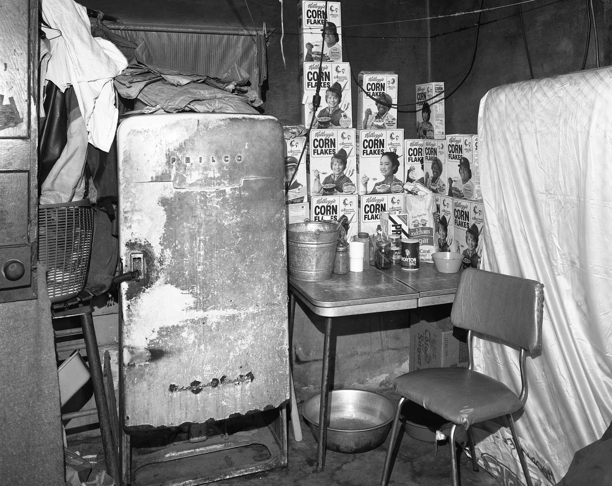 Mrs. Fulton's kitchen, Natchez, Ms., 1984.