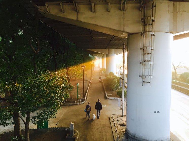 Kototoi Bridge, Tokyo