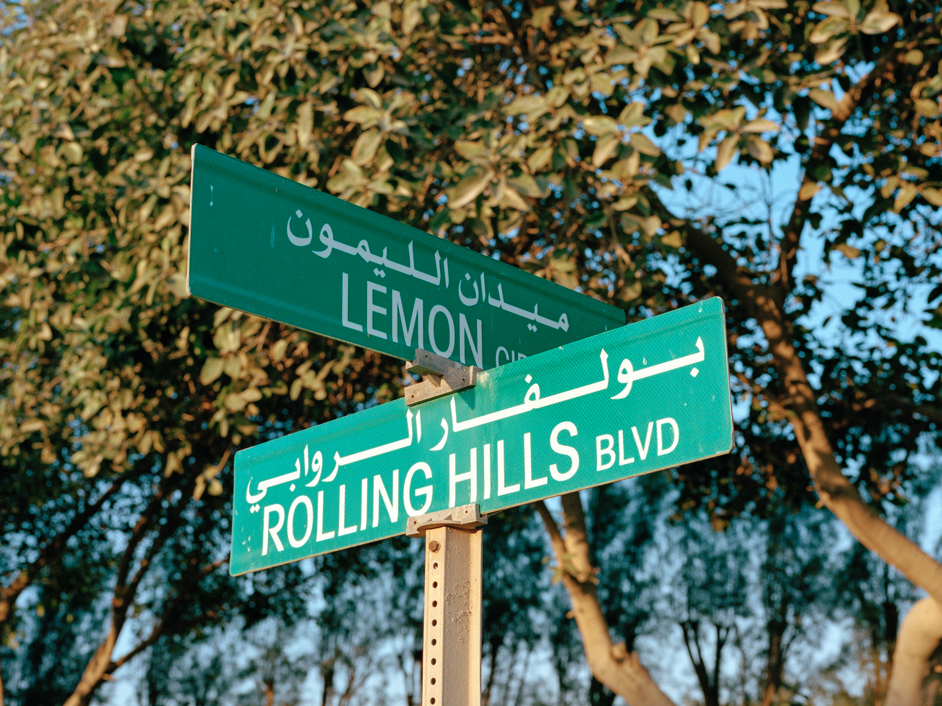 Street signs in Dhahran are written in both Arabic and English.