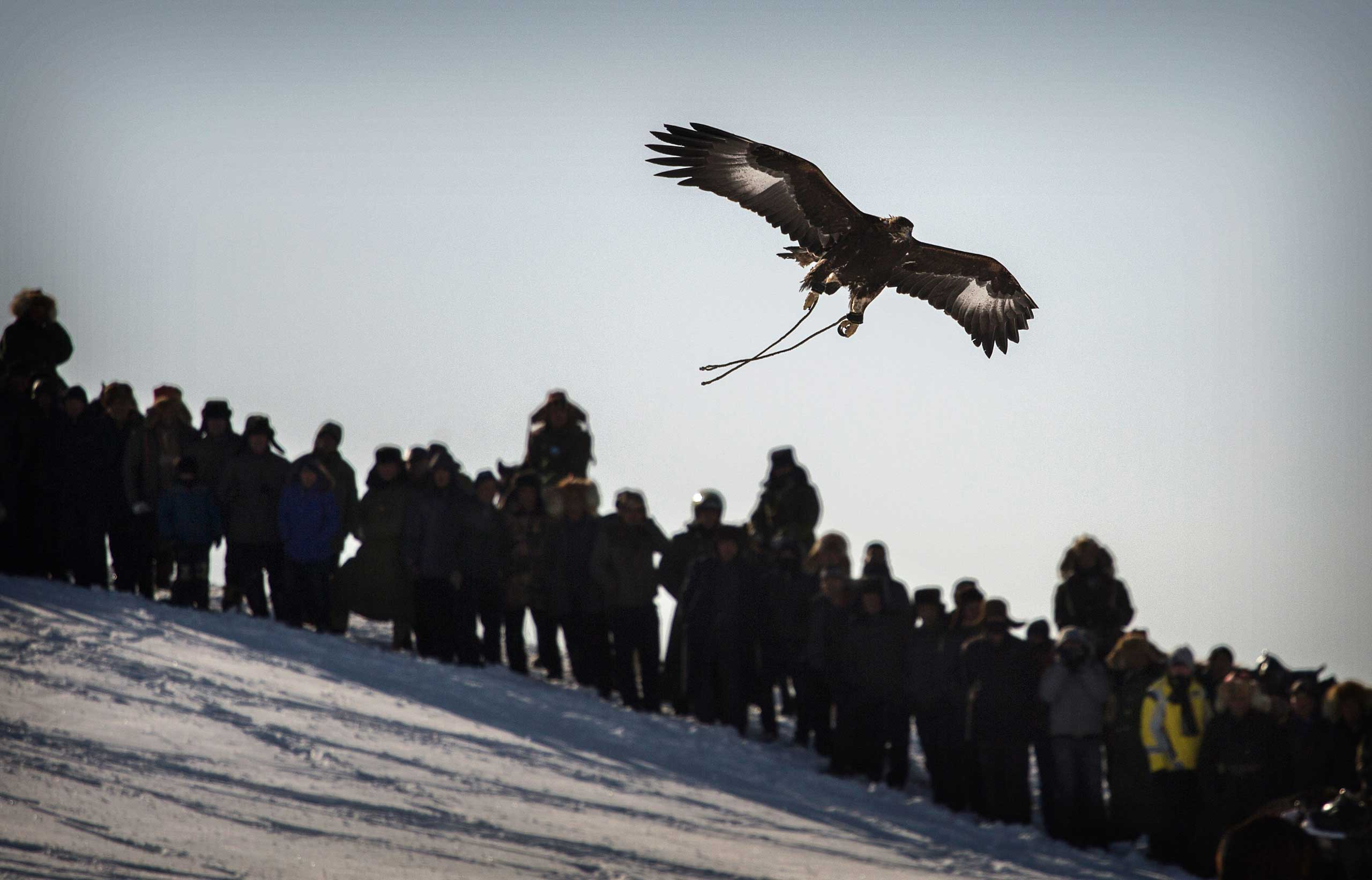 Spectators watch as an eagle flies above the crowd after it was released by a Chinese Kazakh eagle hunter.