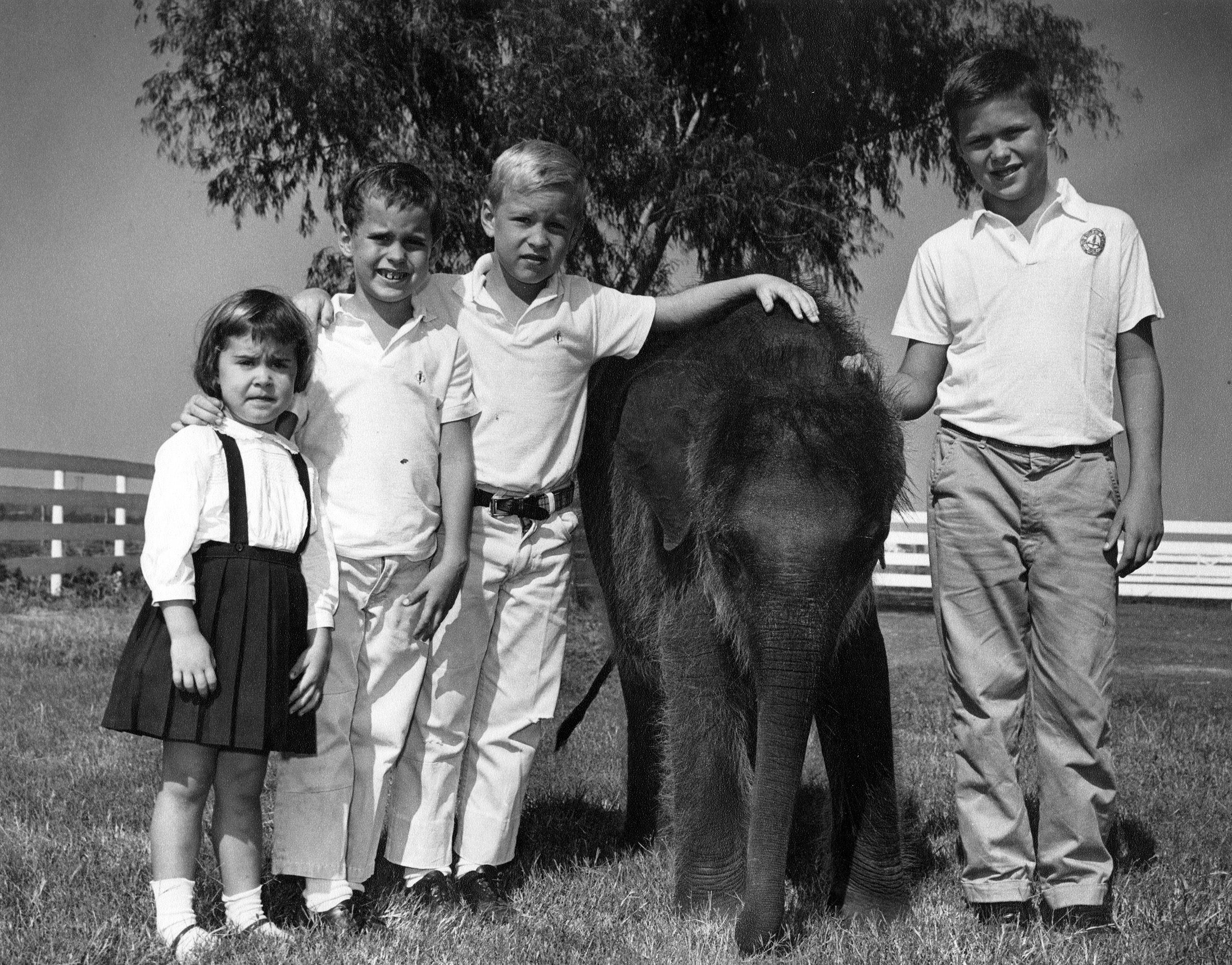 From left to right: Doro, Marvin, Neil, and Jeb Bush, fall 1963.