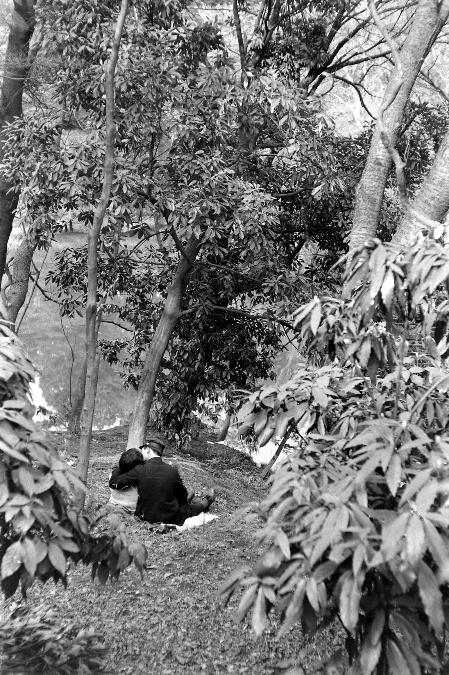 A young couple making out on a date in a park in Tokyo.  1959.
