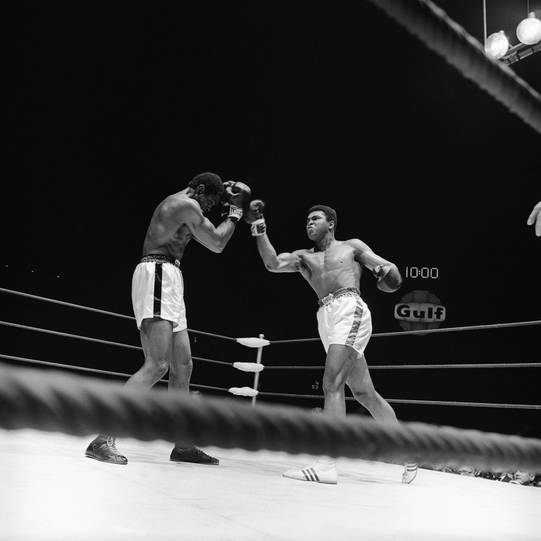 Mohammad Ali vs Ernie Terrell , Houston, 1967                               Lance Armstrong:  I first met the Champ in the year 2000 and have been blessed to spend time with him and his lovely wife Lonnie.I was honored to be included with him and others as a founding member of Athletes for Hope. A                               photo of him defeating Ernie Terrell in the Astrodome in Houston sits on                               a book shelf in my office.                                                               Lance Armstrong won the Tour de France seven times in a row and is the founder and chairman of the Lance Armstrong Foundation nonprofit                               organization.