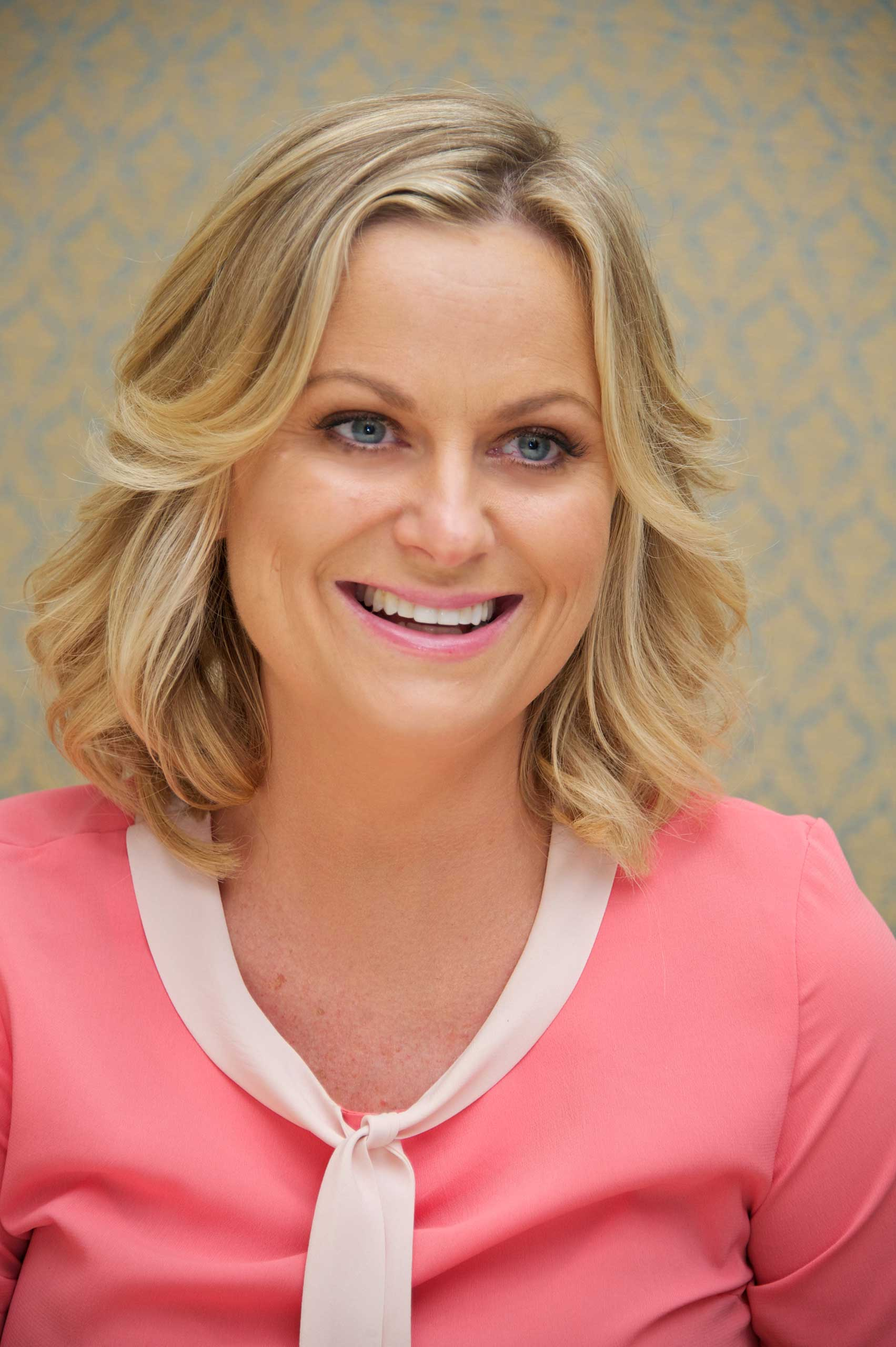 BEVERLY HILLS, CA - OCTOBER 15: Amy Poehler at the  Parks & Recreation  Press Conference at the Four Seasons Hotel on October 15, 2013 in Beverly Hills, California. (Photo by Vera Anderson/WireImage)