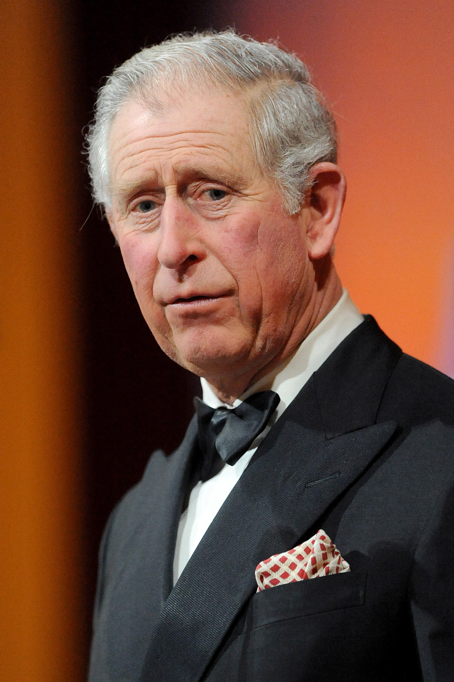 Prince Charles, Prince of Wales, gives a speech as he attends the British Asian Trust dinner at Banqueting House on Feb. 3, 2015 in London, England.