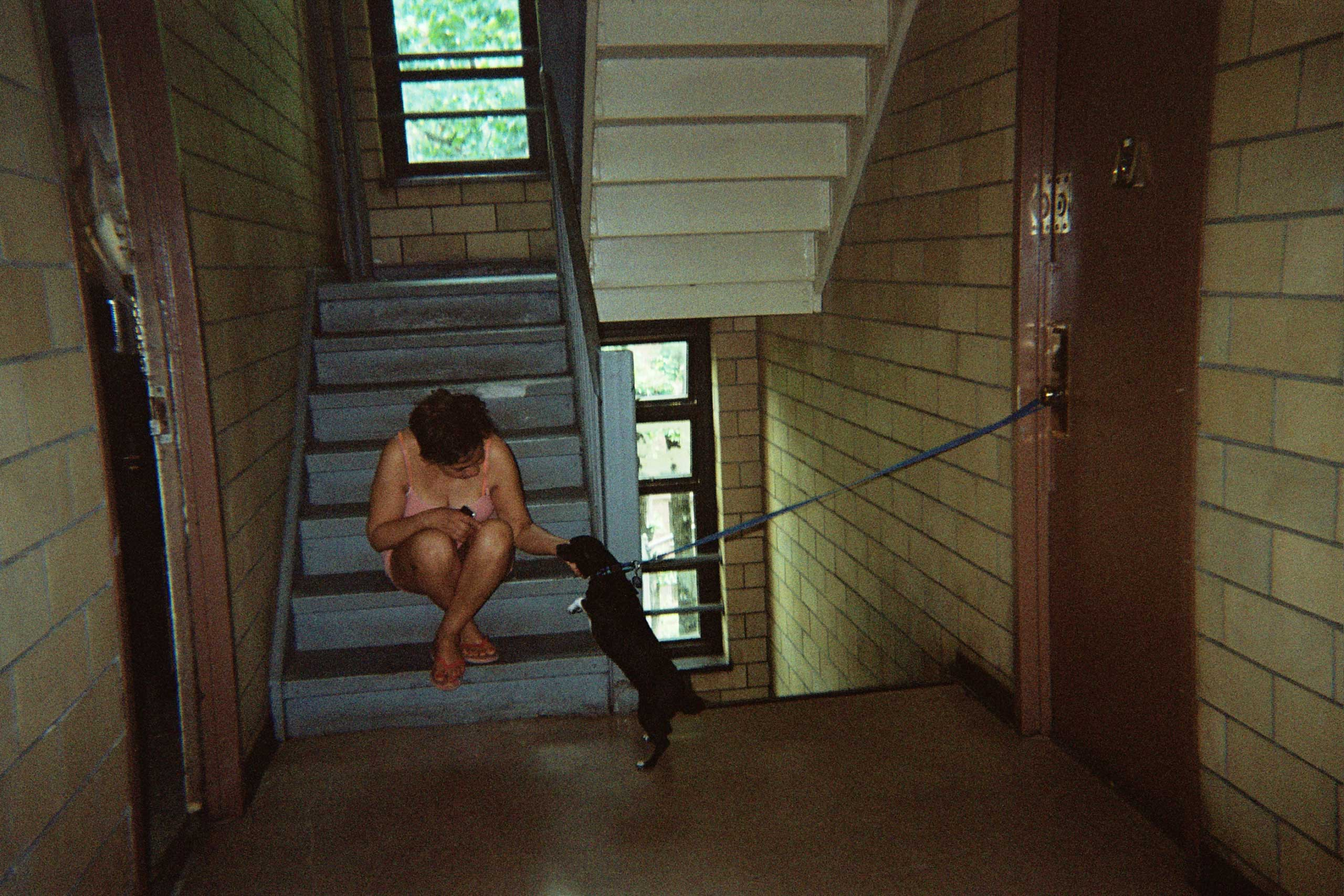 A neighbor looks after another neighbor's dog at the Amsterdam Houses on the Upper West Side, New York City.