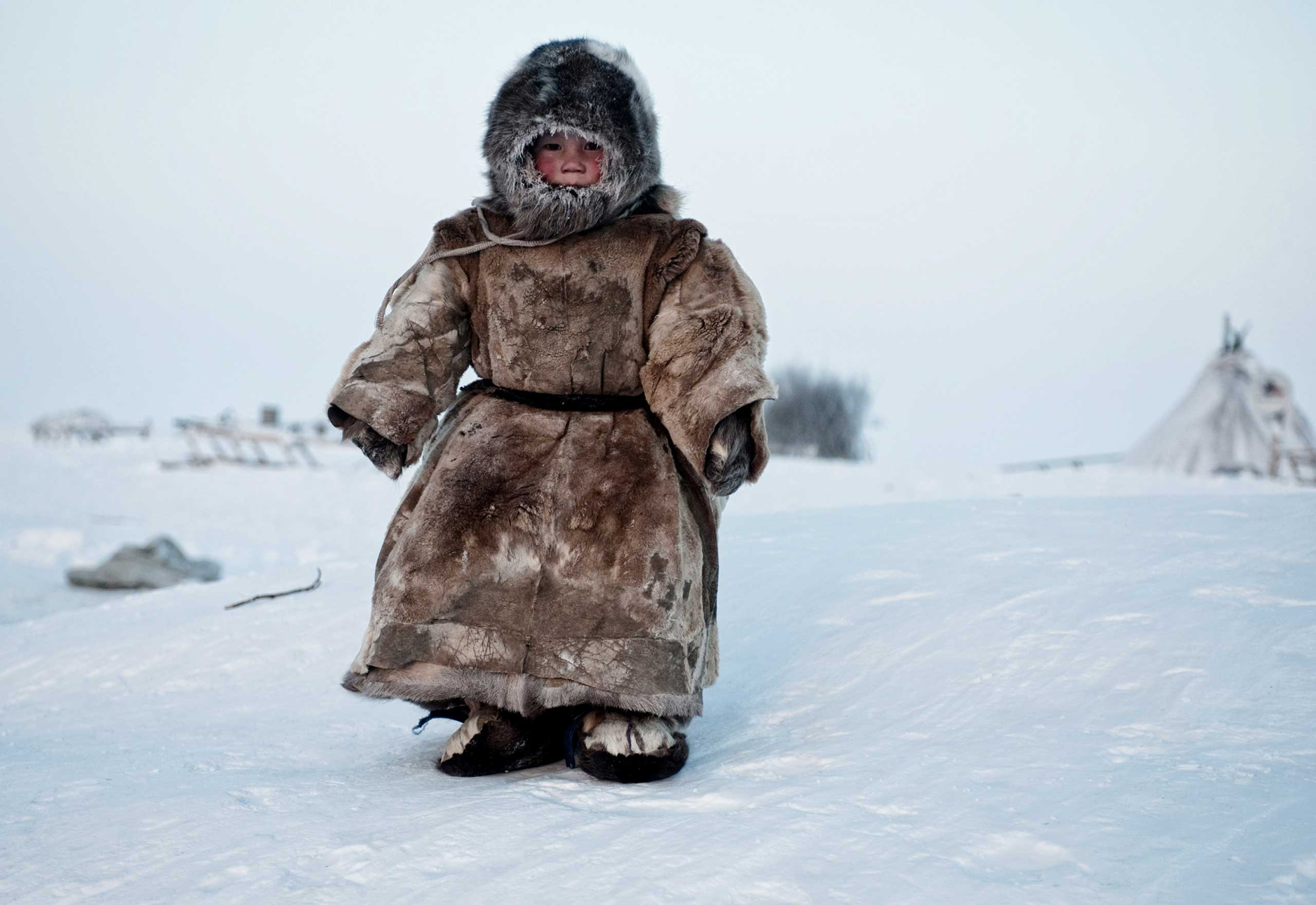 Nominated in the mile category. Simon Morris' work on the Nenets people in Siberia.