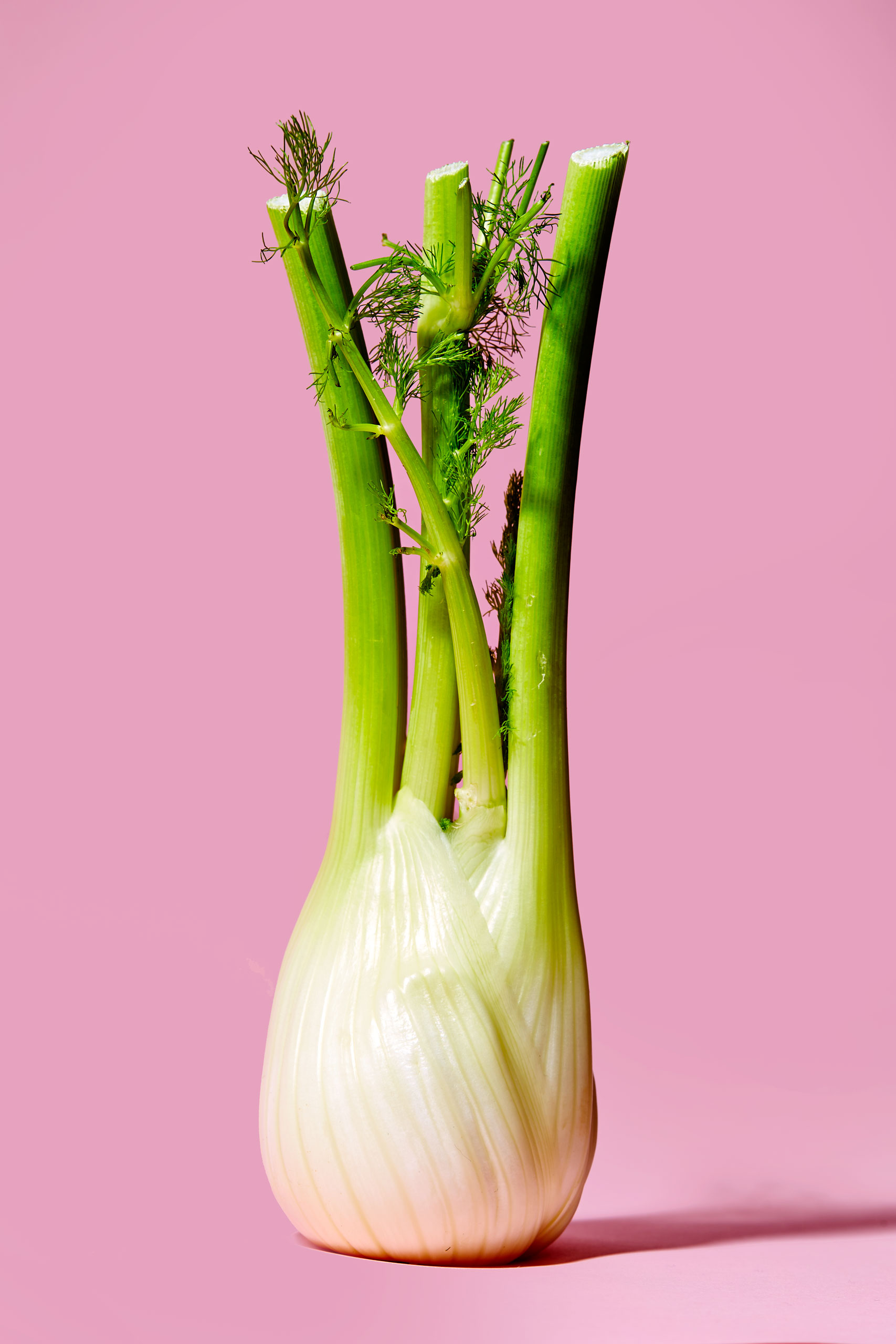 healthiest foods, health food, diet, nutrition, time.com stock, fennel, vegetables