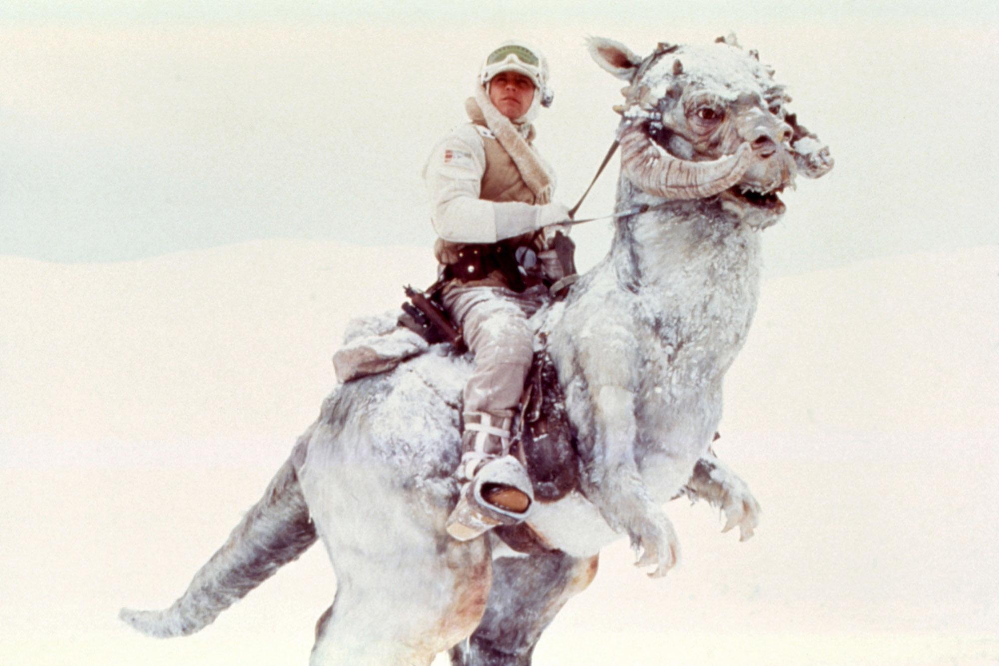 1981: The Empire Strikes Back