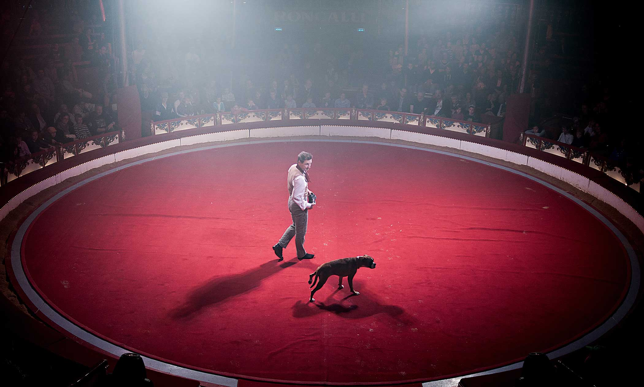 Circus Roncalli                               Leonid Beljakov with  his dog Boxer Klitschko during their show. Leonid sings a song in German:  No, not today, today I am not going to do anything  and Boxer refuses to do anything,makes a sad face, acts like he is peeing.