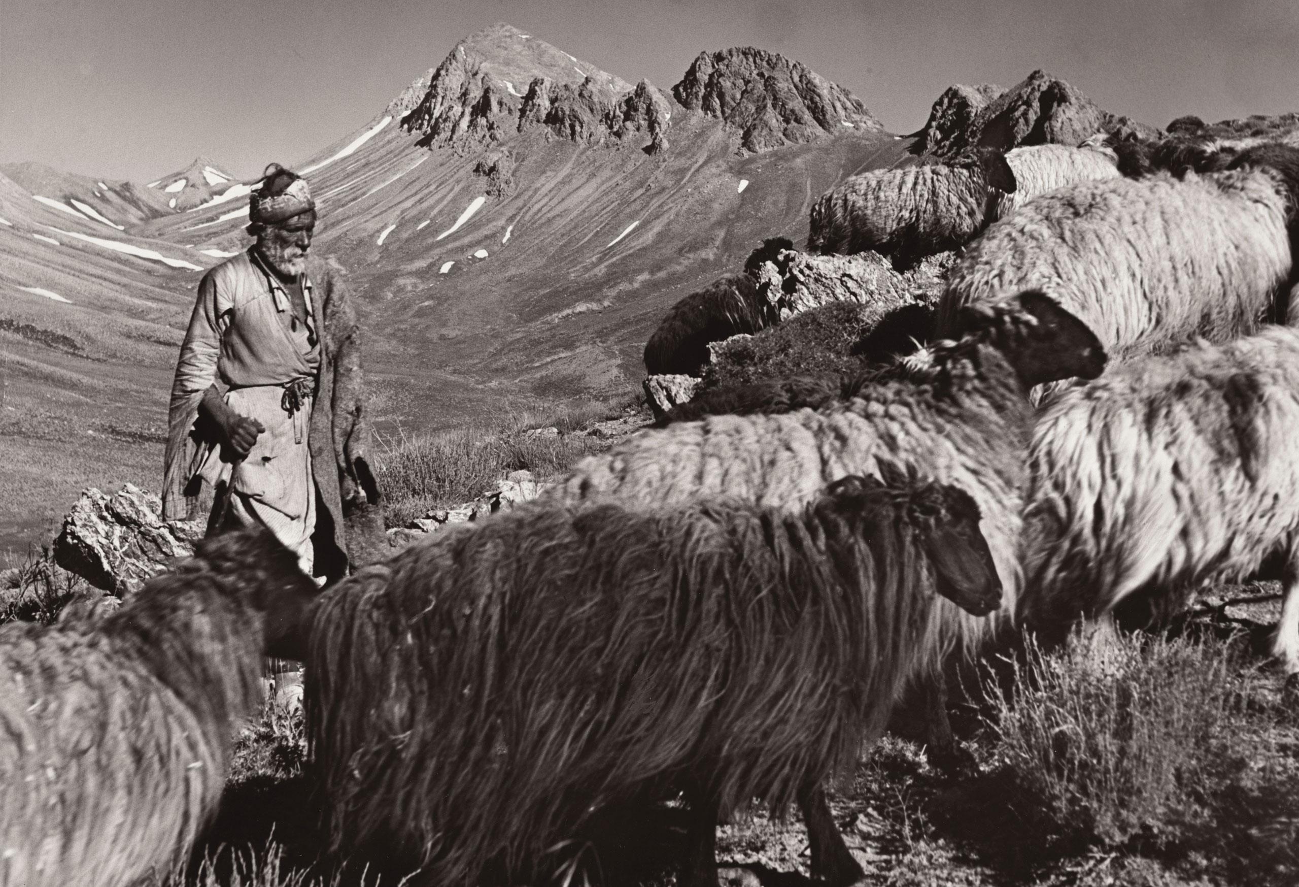 Qashqai nomadi shepherd, Iran, 1946.