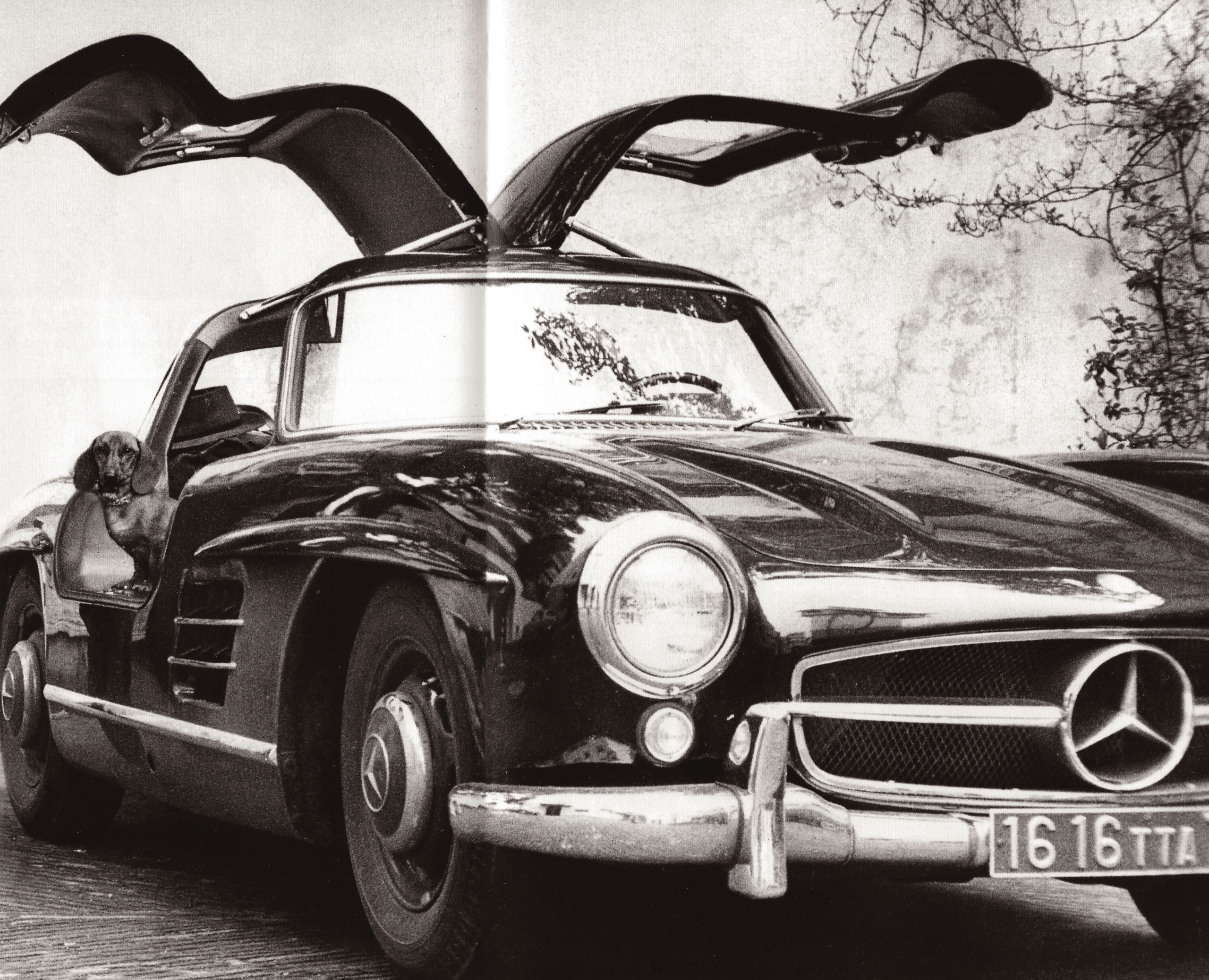 Copilot to visit neighbor Picasso; Villa La Californie, Cannes France, 1956.