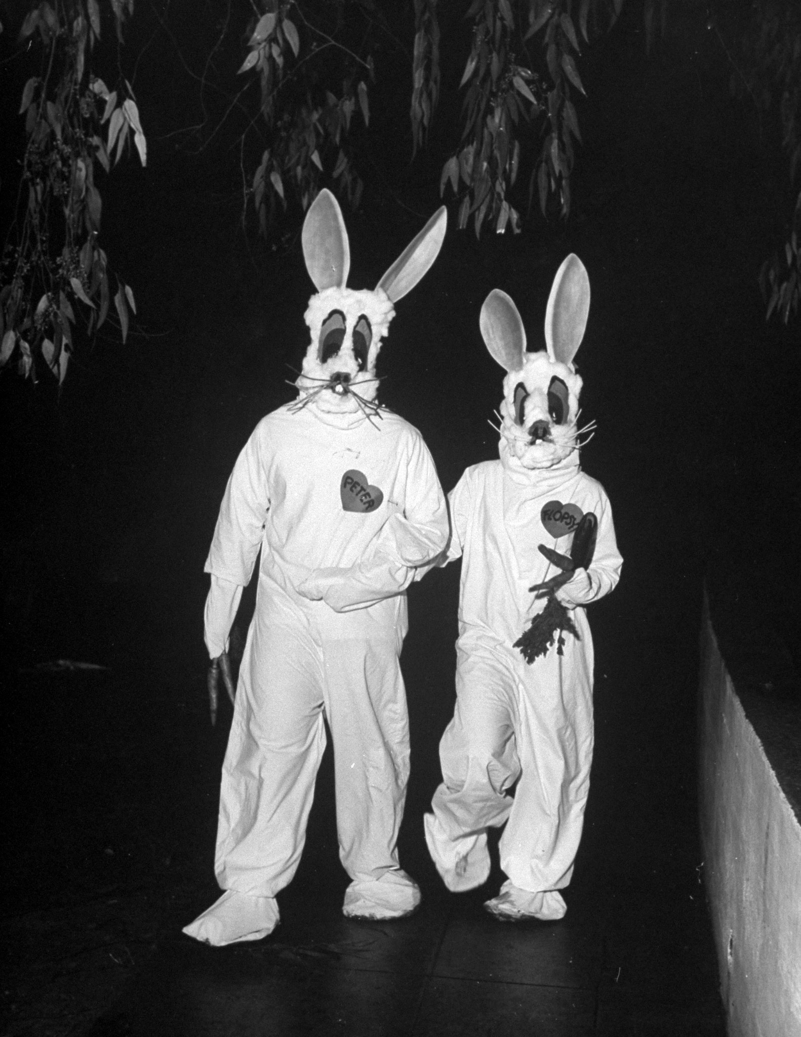<b>Caption from LIFE.</b> Make-believe rabbits, Bud Jones and Muriel Goodwin in ordinary campus life, made the most startling and effective appearance at the masquerade party. The costumes were sewn together by Miss. Goodwin from old bed sheeting of dark felt and cotton batting for less than a dollar. The entire party cost a little under $400.