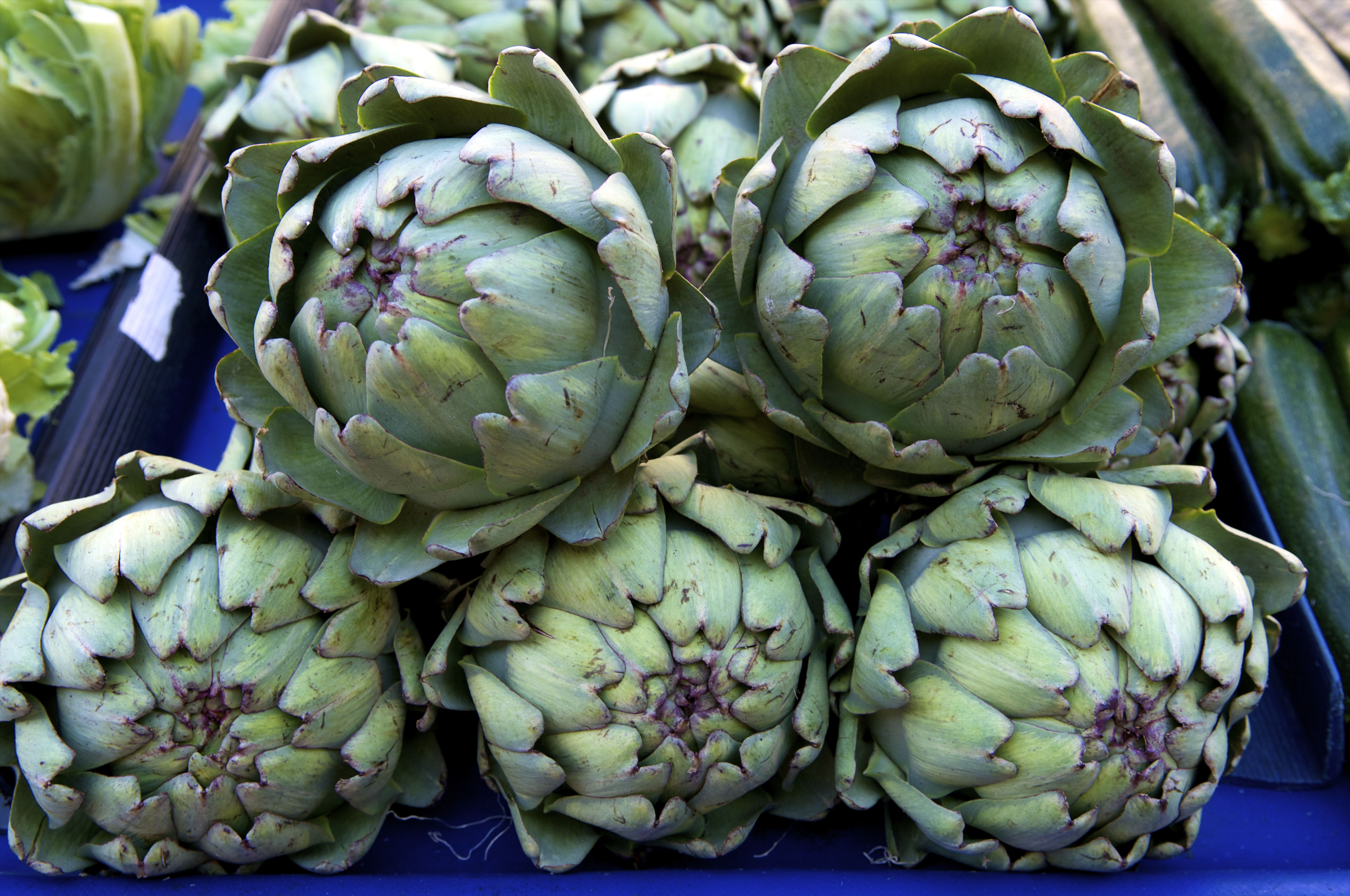 Artichokes:  You can see artichokes year-round, but this is by far the time to eat them,  says Romano.  They're the most meaty artichokes you will have in the season and all year, and they have the biggest hearts.