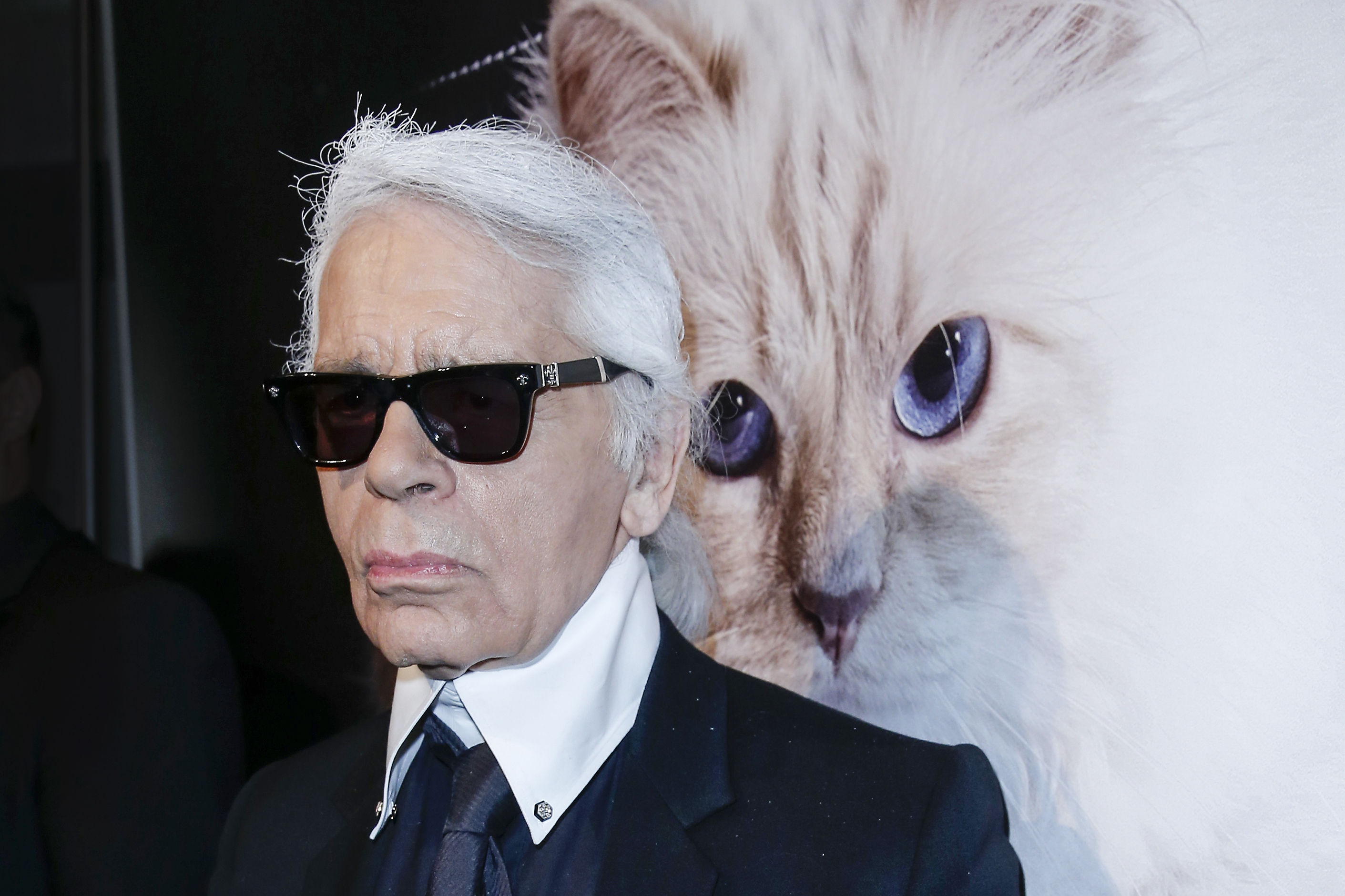 Karl Lagerfeld and cat, Choupette