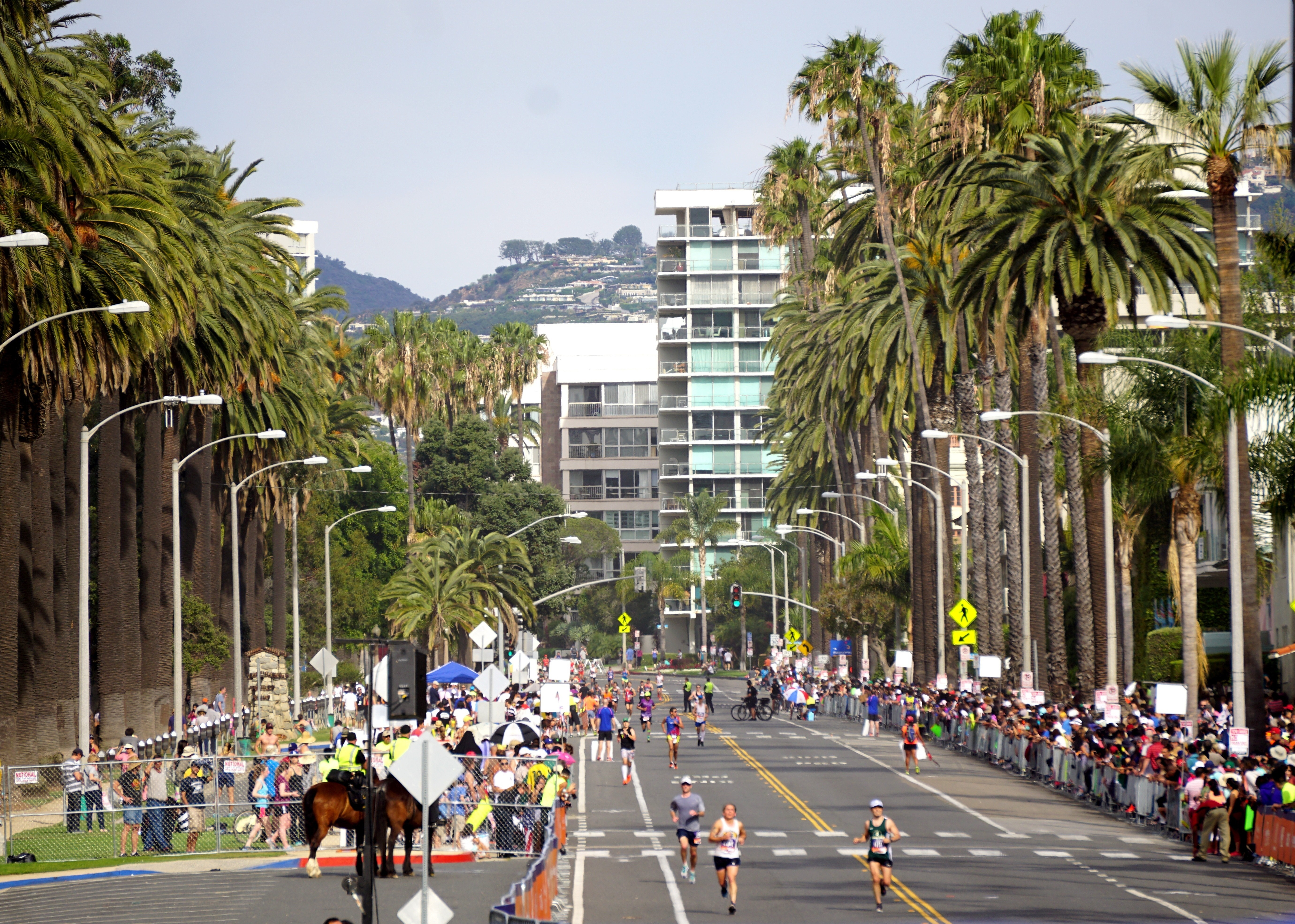 The 2015 Los Angeles Marathon held in Los Angeles on March 15, 2015