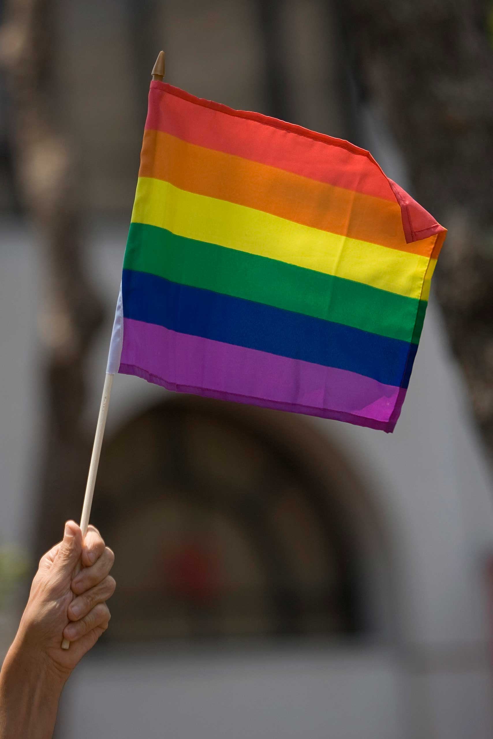 A reveler holds a gay pride flag during the 38th Annual San Francisco Lesbian, Gay, Bisexual, Transgender (LGBT) Pride Celebration Parade on Market Street, June 29, 2008 in San Francisco, California.