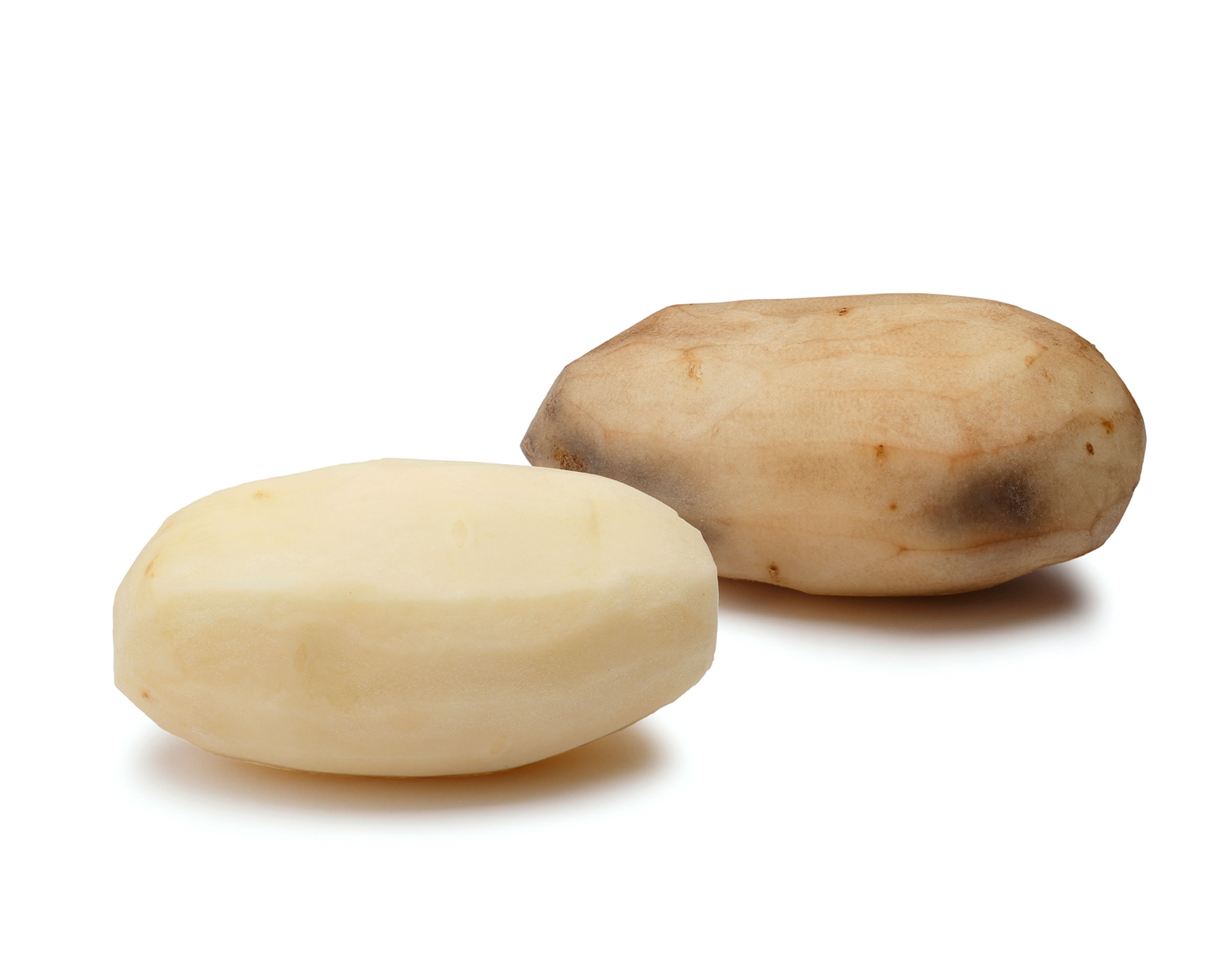 Genetically modified potatoes from the Simplot Corporation. The Food and Drug Administration (FDA) approved the genetically engineered foods as safe, saying they are as nutritious as their conventional counterparts.