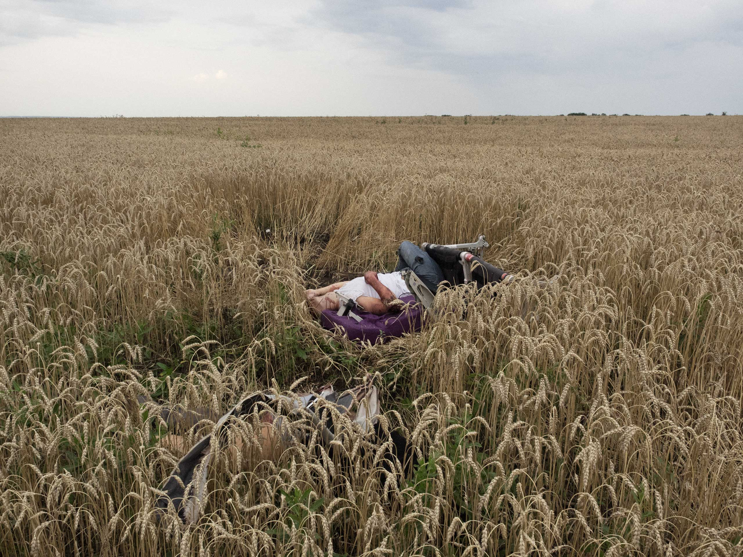First Place News Single Istanbul Photo Awards                                Remains of the plane and a body of a  passenger at the site of the crash of Malaysia Airlines MH-17 in Torez, Ukraine July 17, 2014.