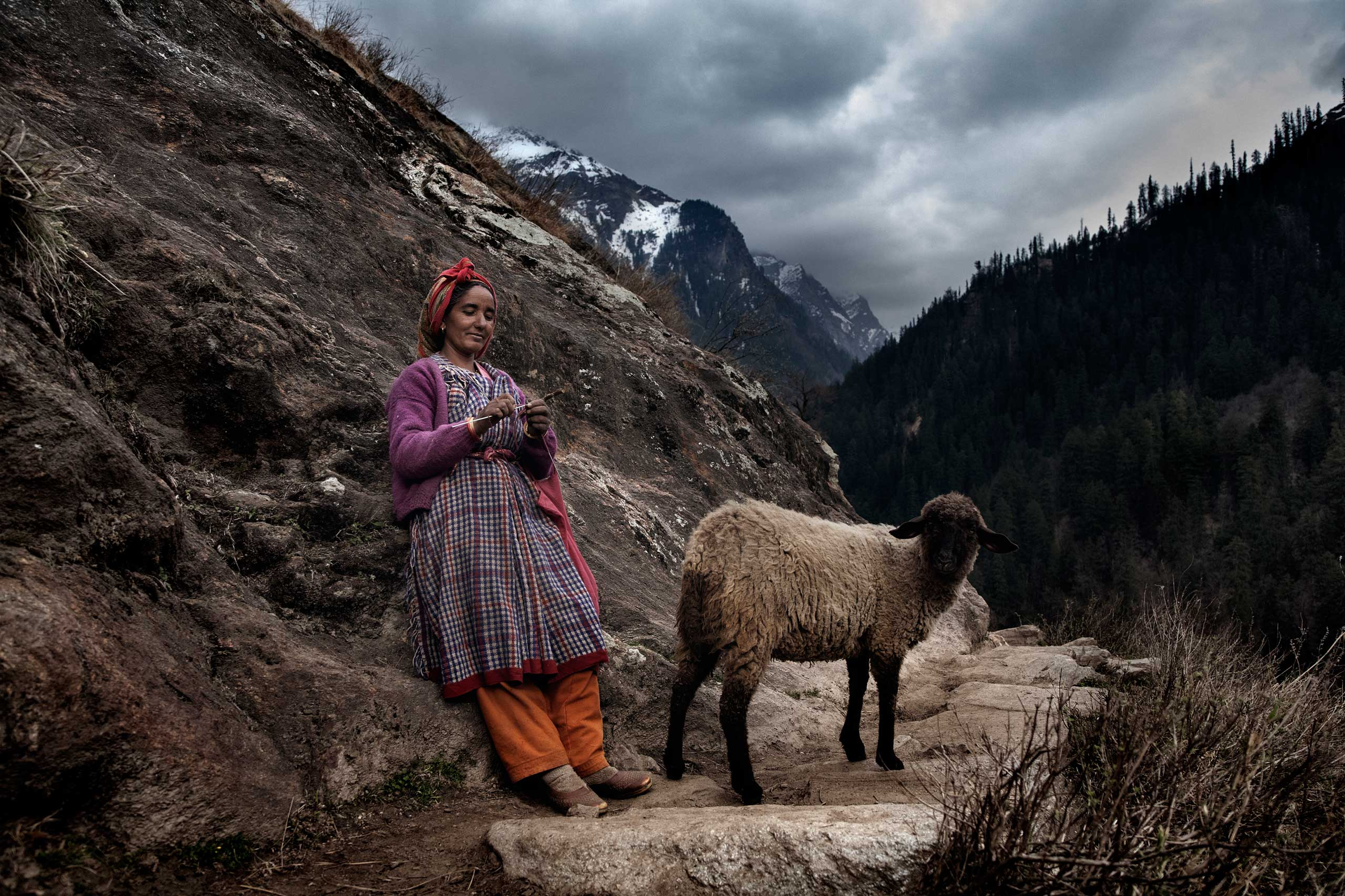 A local woman walks her sheep while weaving wool in Oct. 2011.