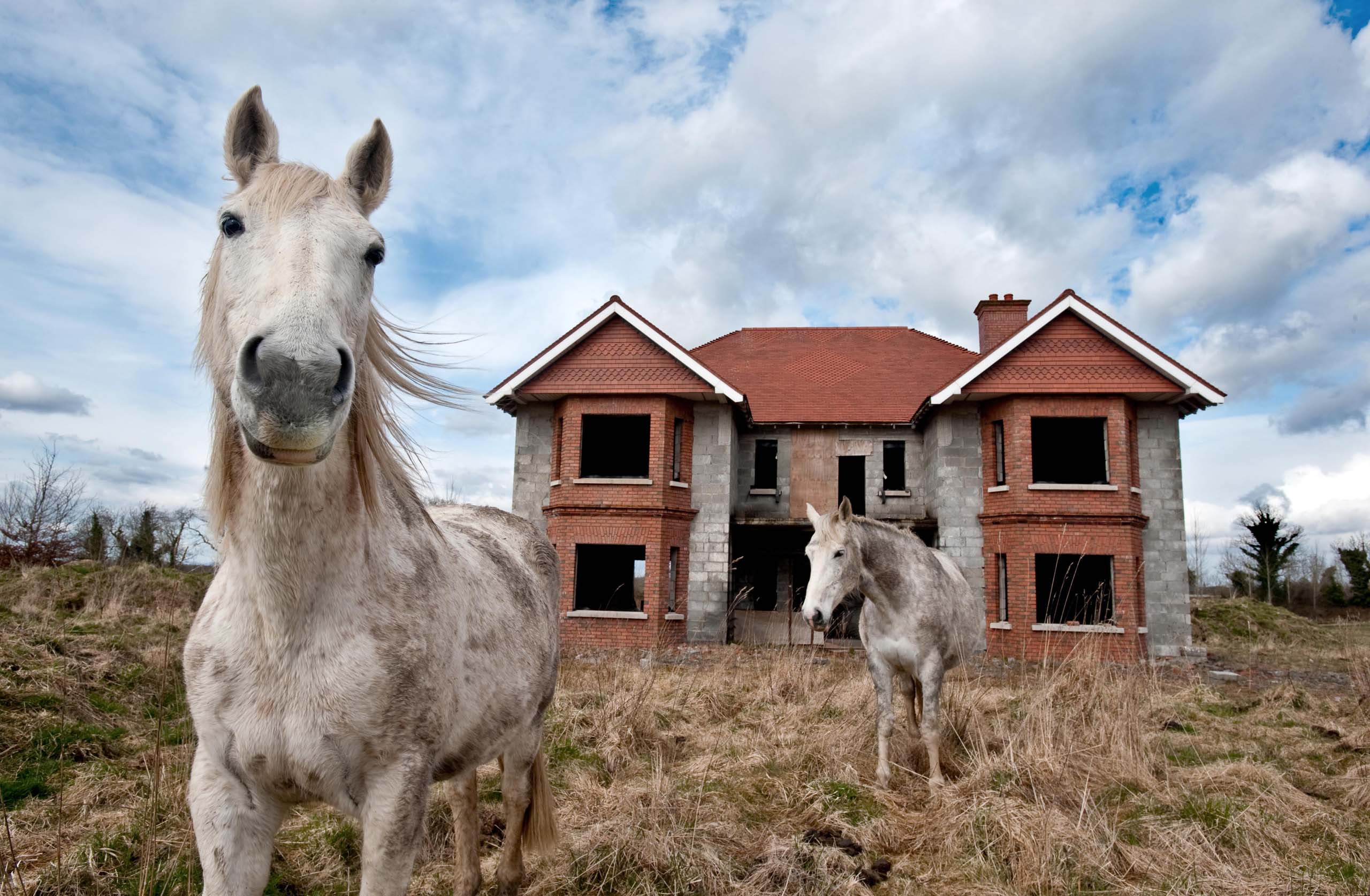 Horses in a field in front of a new house which has been left unfinished in County Leitrim, Ireland