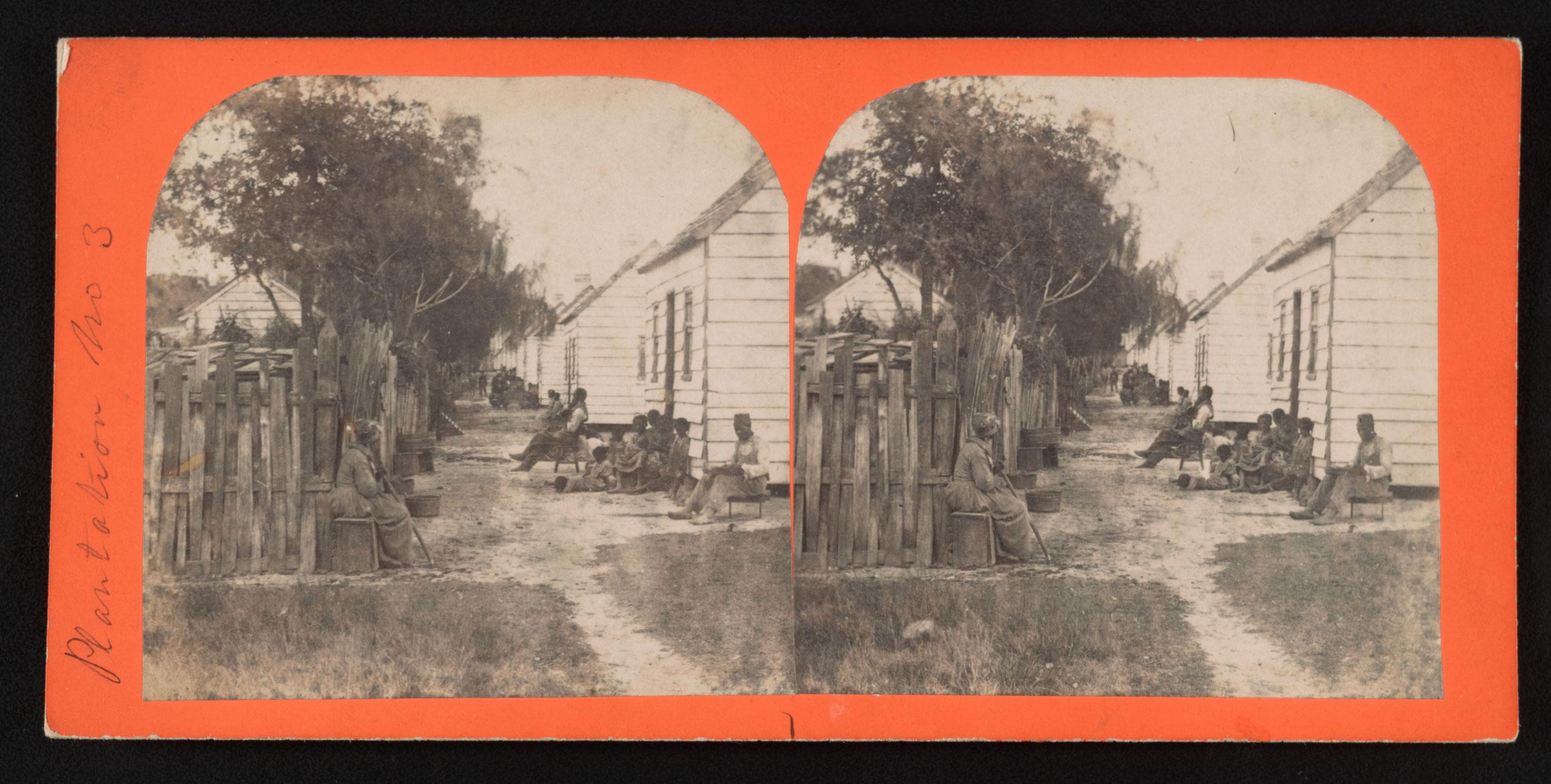 A plantation in Charleston, S.C., circa 1860-1863.