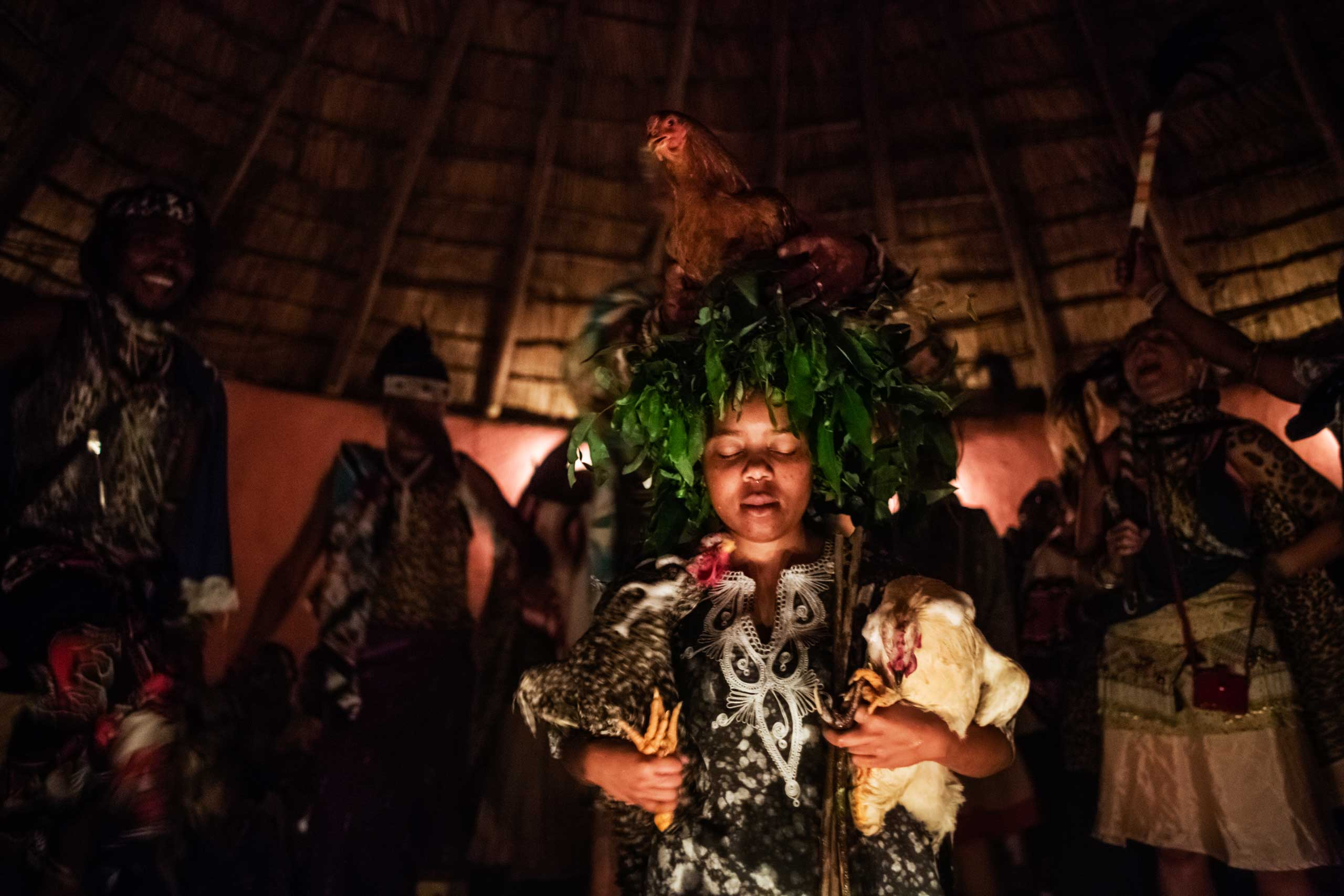 During her 'ingenisa', the initiation ceremony to become a thwasa Gugulethu Khumalo meditates, holding two chicken under her arms while a third one sits on her head, accompanied by sangomas' singing and dancing in the background on Nov. 28, 2014 in Mdakane, Lusikisiki District, South Africa.