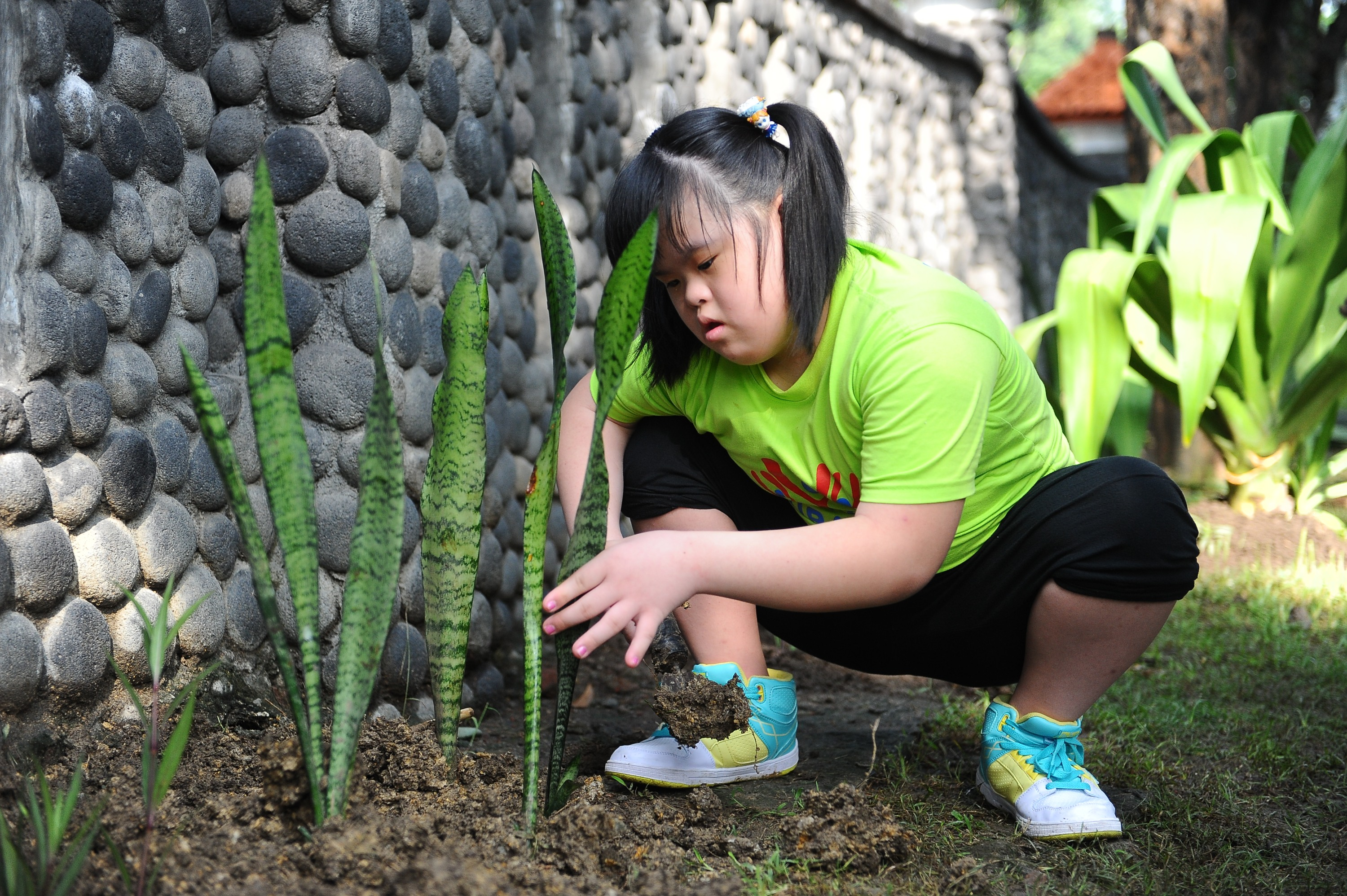 A girl with Down syndrome takes part in planting a tree during World Down Syndrome Day on March 21, 2014 in Surabaya, Indonesia.