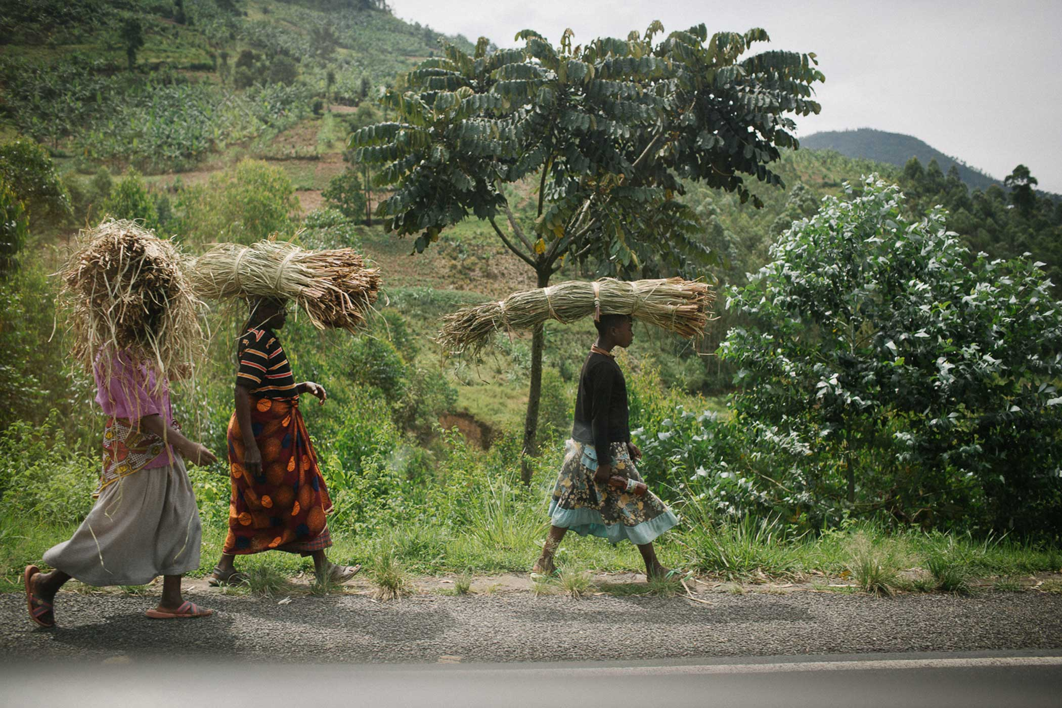 Young women transport corn husks in the outskirts of Kigali. Rwanda is attempting to turn it's agrarian society into a knowledge-based economy and instilling a sense of national identity and unity in Rwandans.
