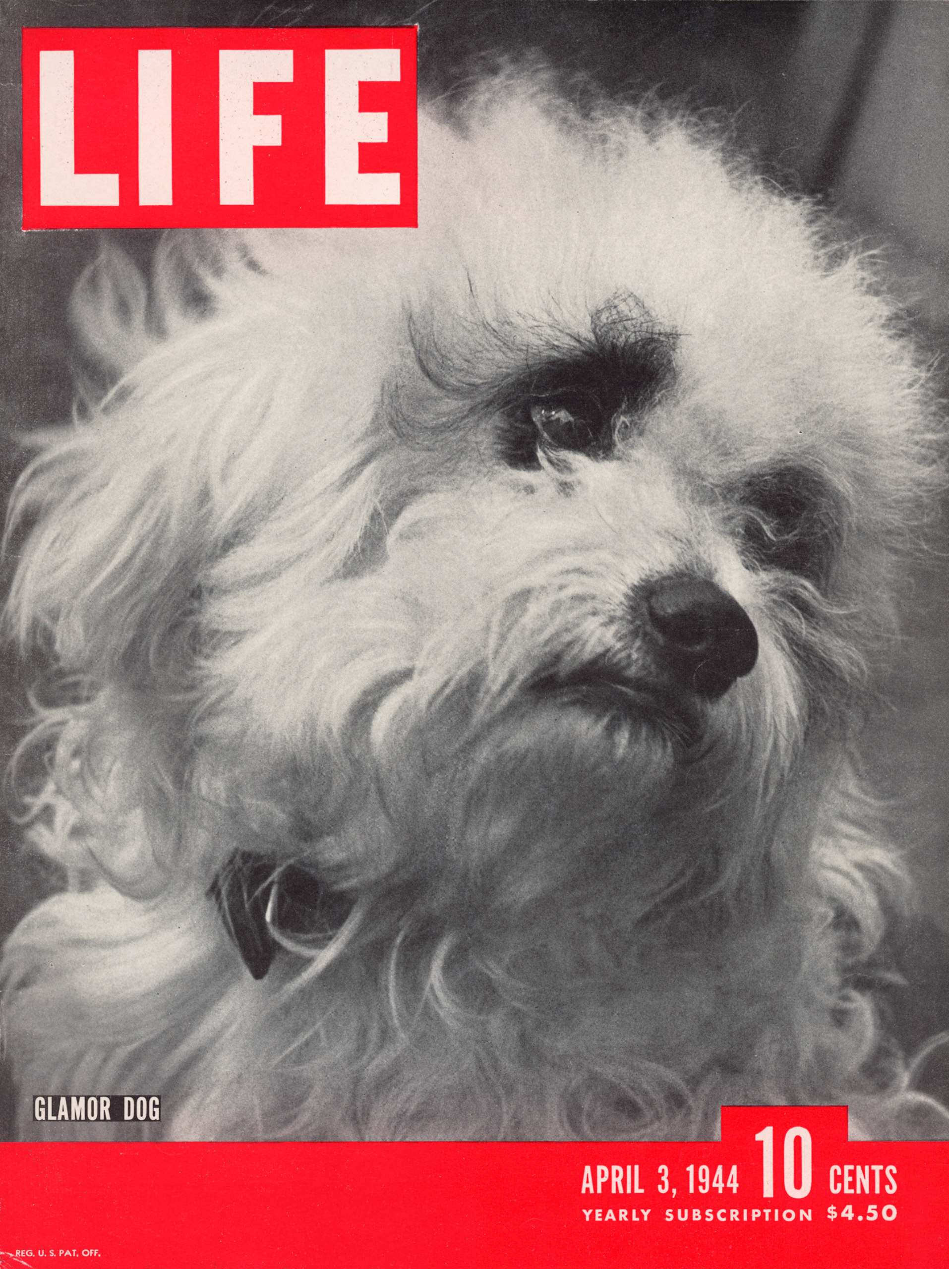 April 3, 1944 LIFE Magazine cover (photo by Nina Leen).