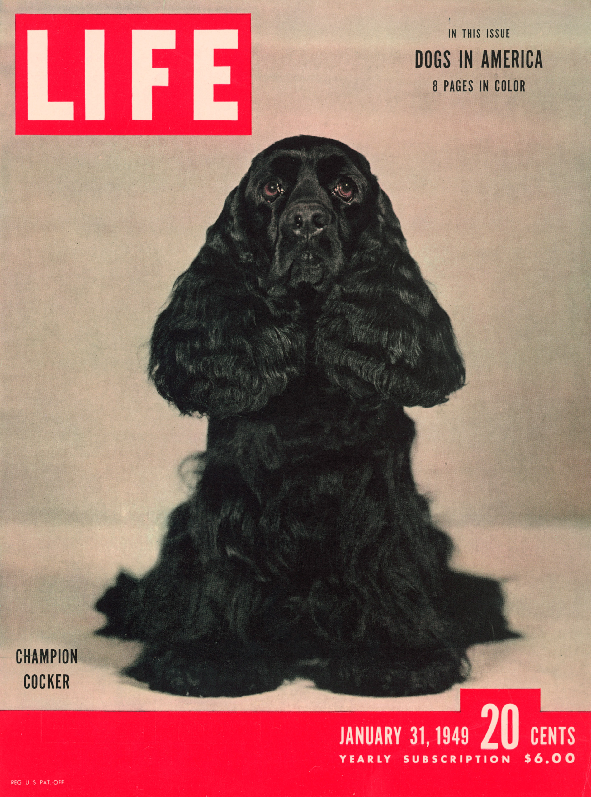 January 31, 1949 LIFE Magazine cover (photo by George Karger).