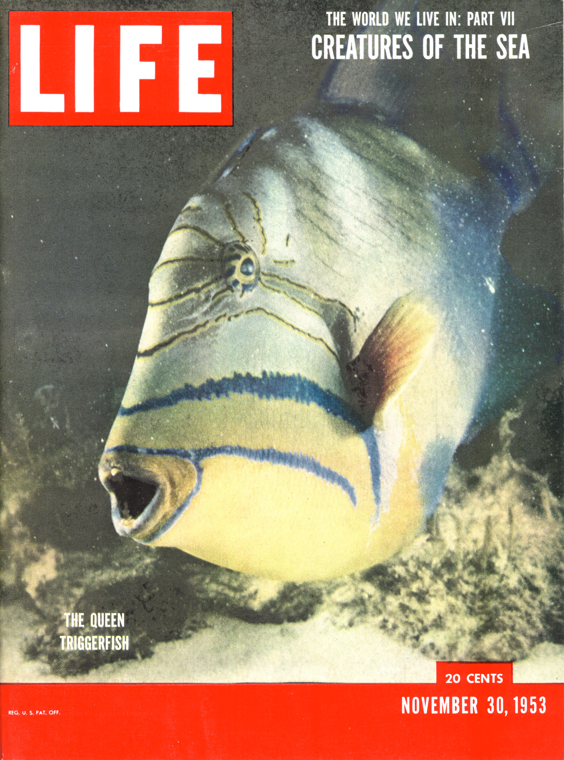 November 30, 1953 LIFE Magazine cover (photo by Fritz Goro).
