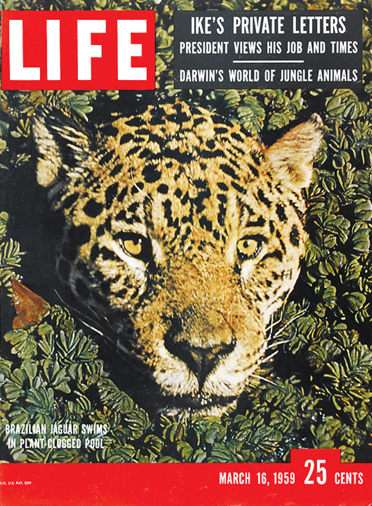March 16, 1959 LIFE Magazine cover (photo by Dmitri Kessel).