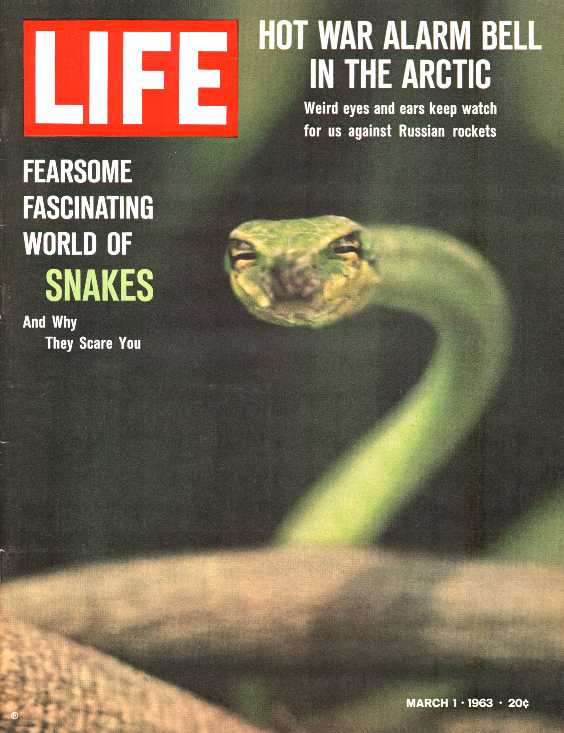 March 1, 1963 LIFE Magazine cover (photo by Nina Leen).