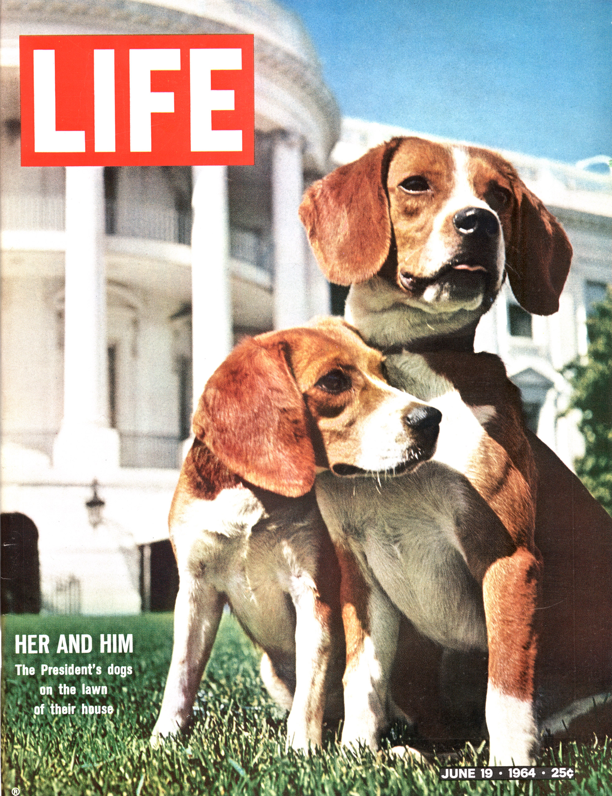 June 19, 1964 LIFE Magazine cover (photo by Francis Miller).