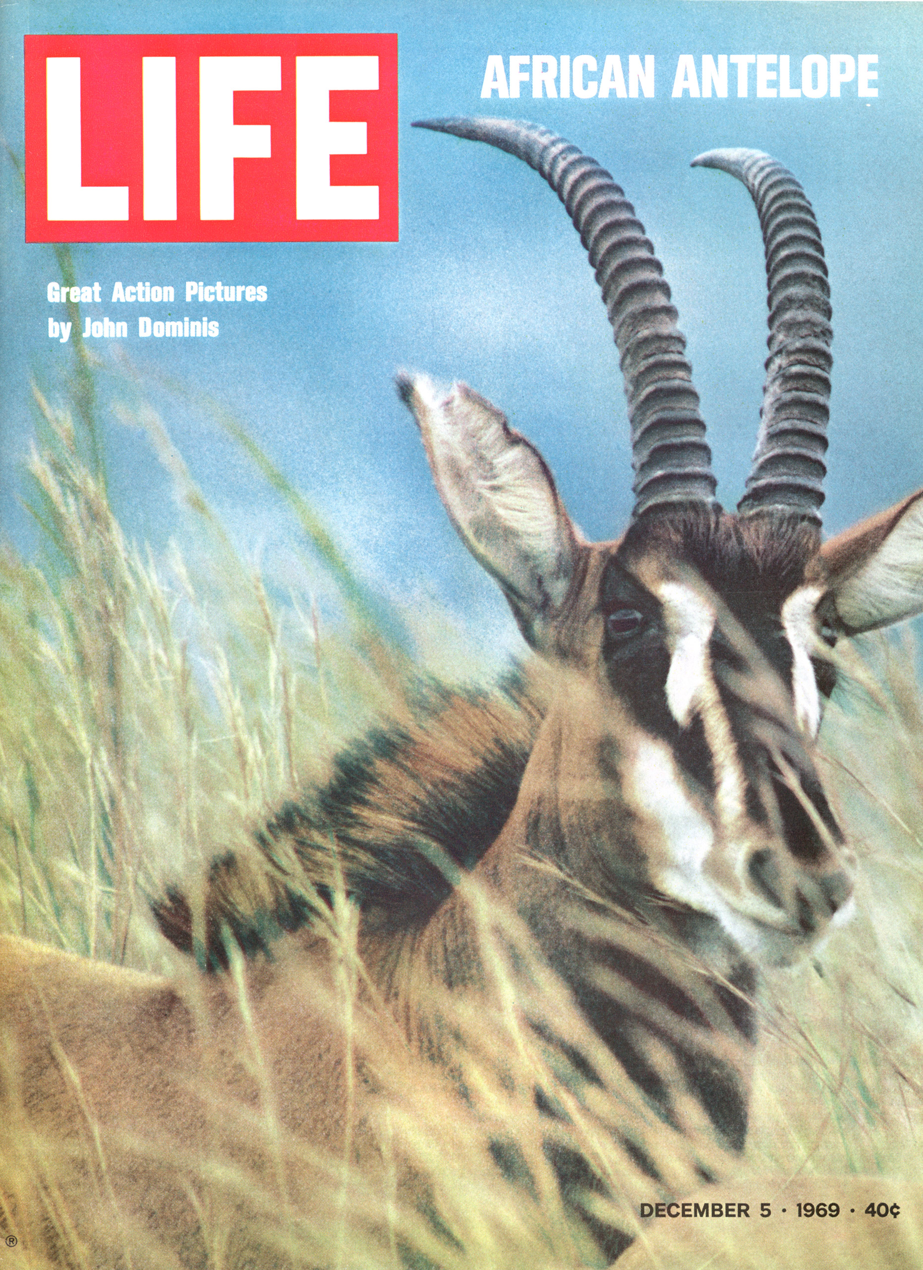 December 5, 1969 LIFE Magazine cover (photo by John Dominis).