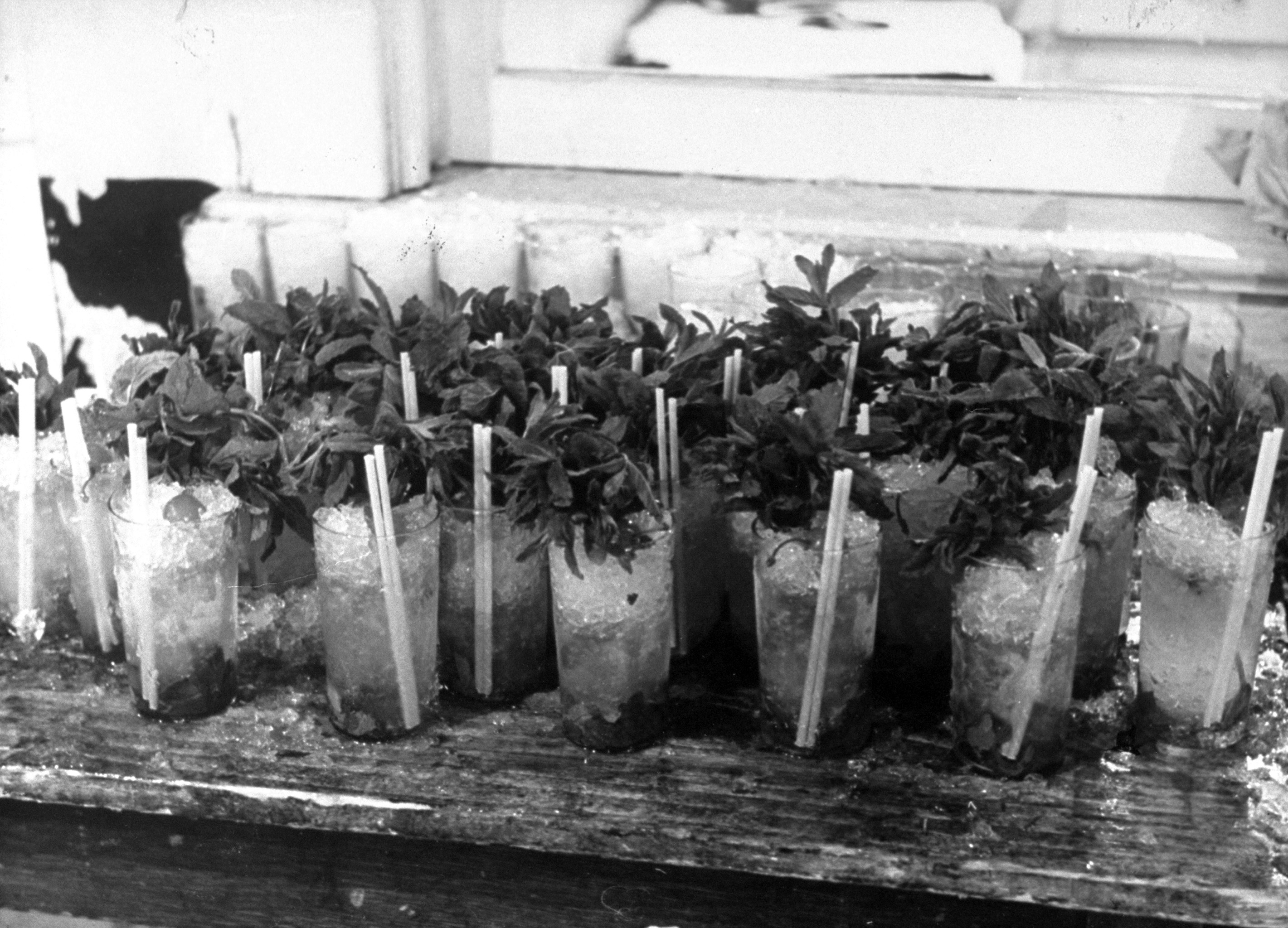 Caption from LIFE. Tall glasses holding mint juleps, consumed by Kentucky Colonels at the annual Kentucky Colonels Julep Reception held at Louisville's Kentucky Hotel day before the Derby, were pronounced incorrect by the private party guests shown elsewhere on these pages who drank their mint juleps from silver mugs.
