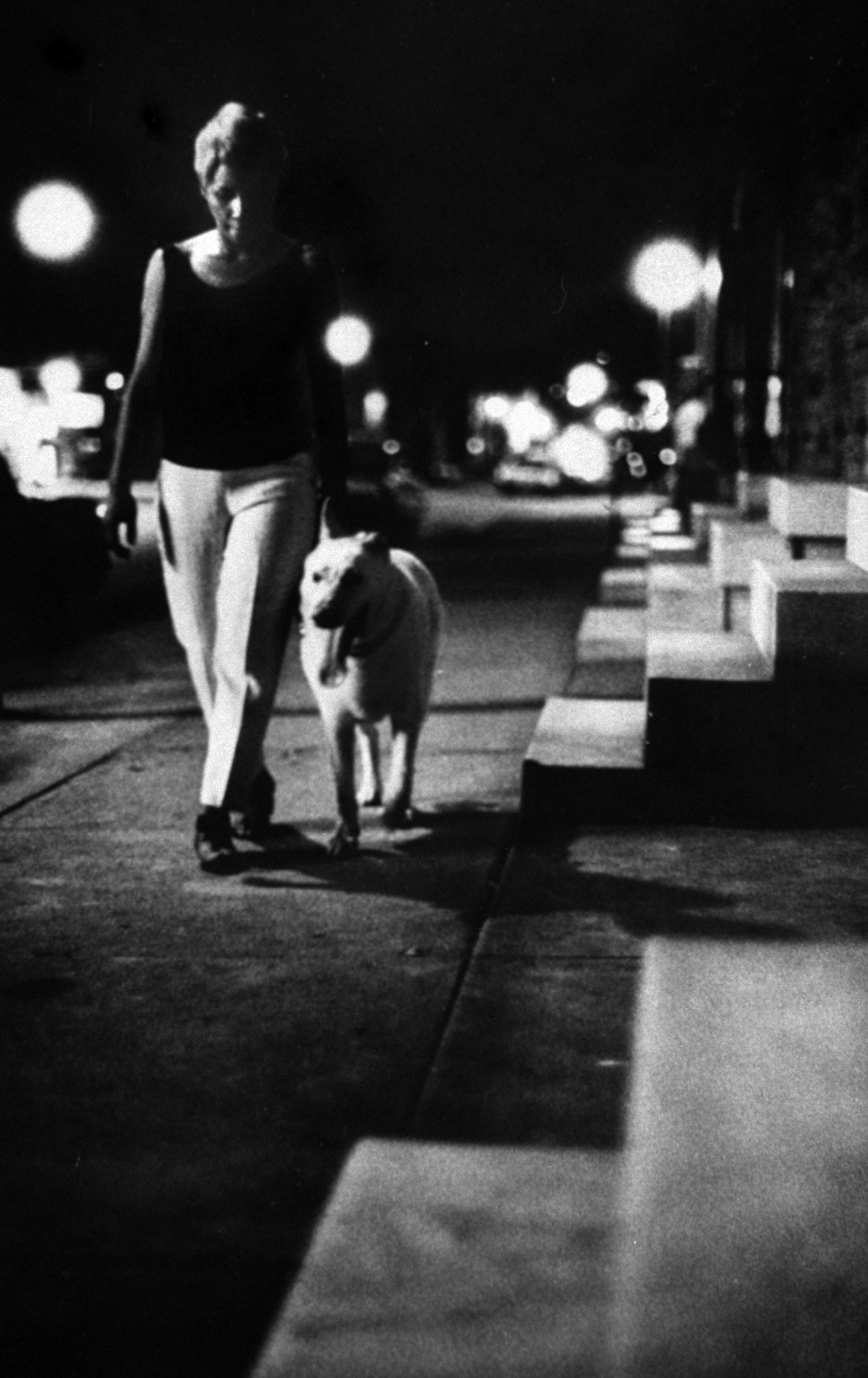 <b>Caption from LIFE.</b> Past the darkened marble stoops that are Baltimore's hallmark, Mrs. Barbara Ringgold walks home after working late—escorted by Tiny, her German shepherd.