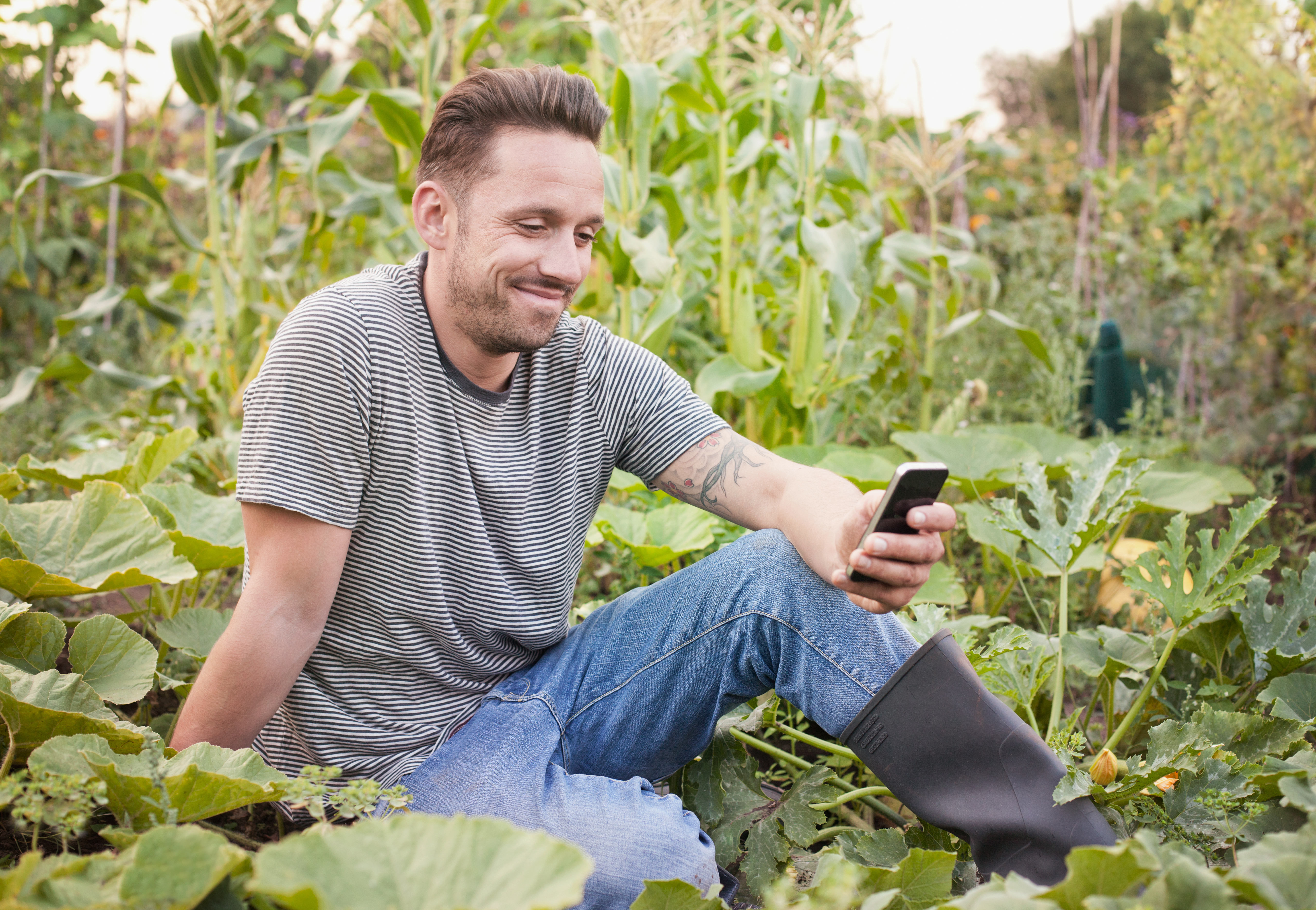 Man texting sat in allotment