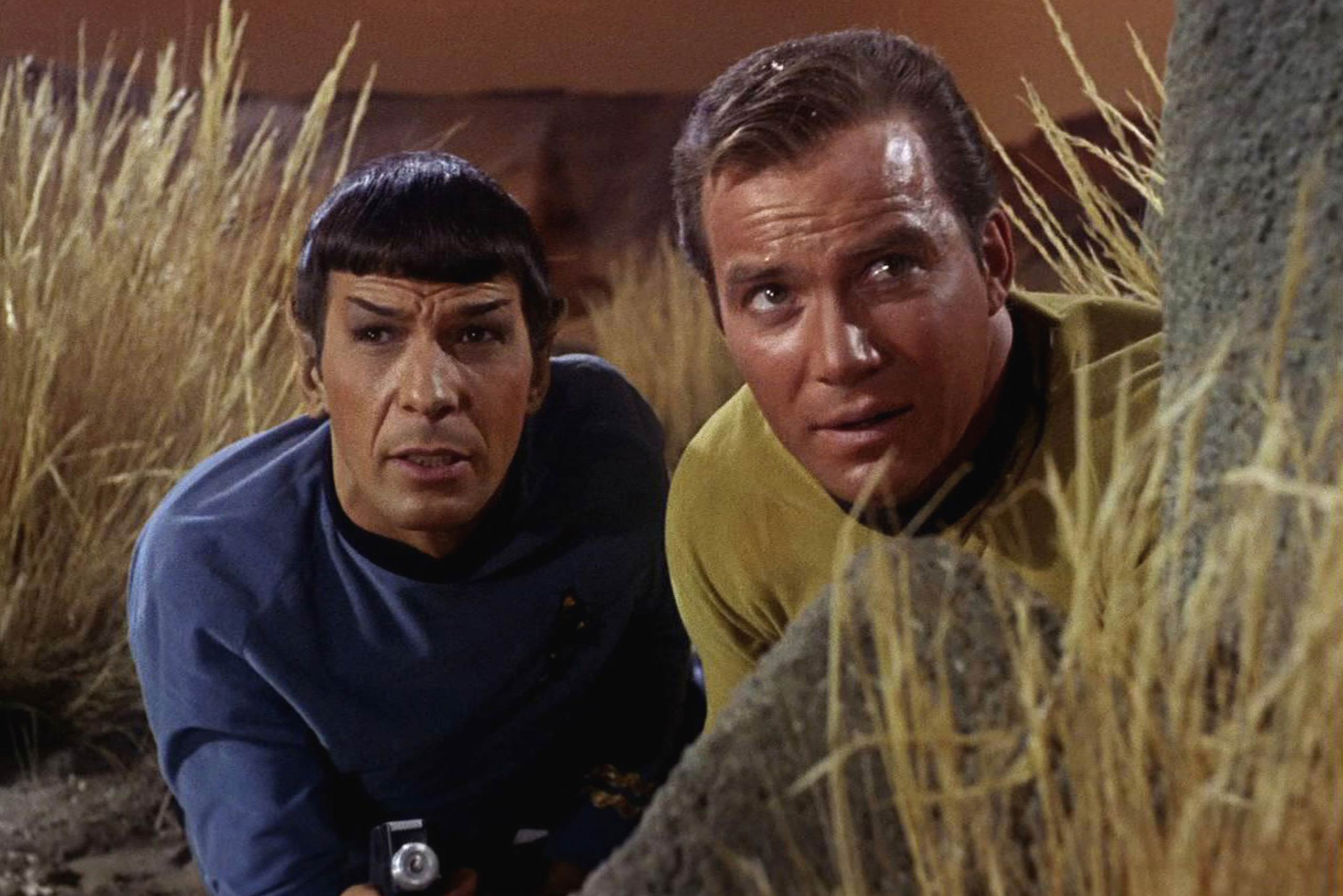 <strong>Spock and Kirk in <i>Star Trek</i></strong>