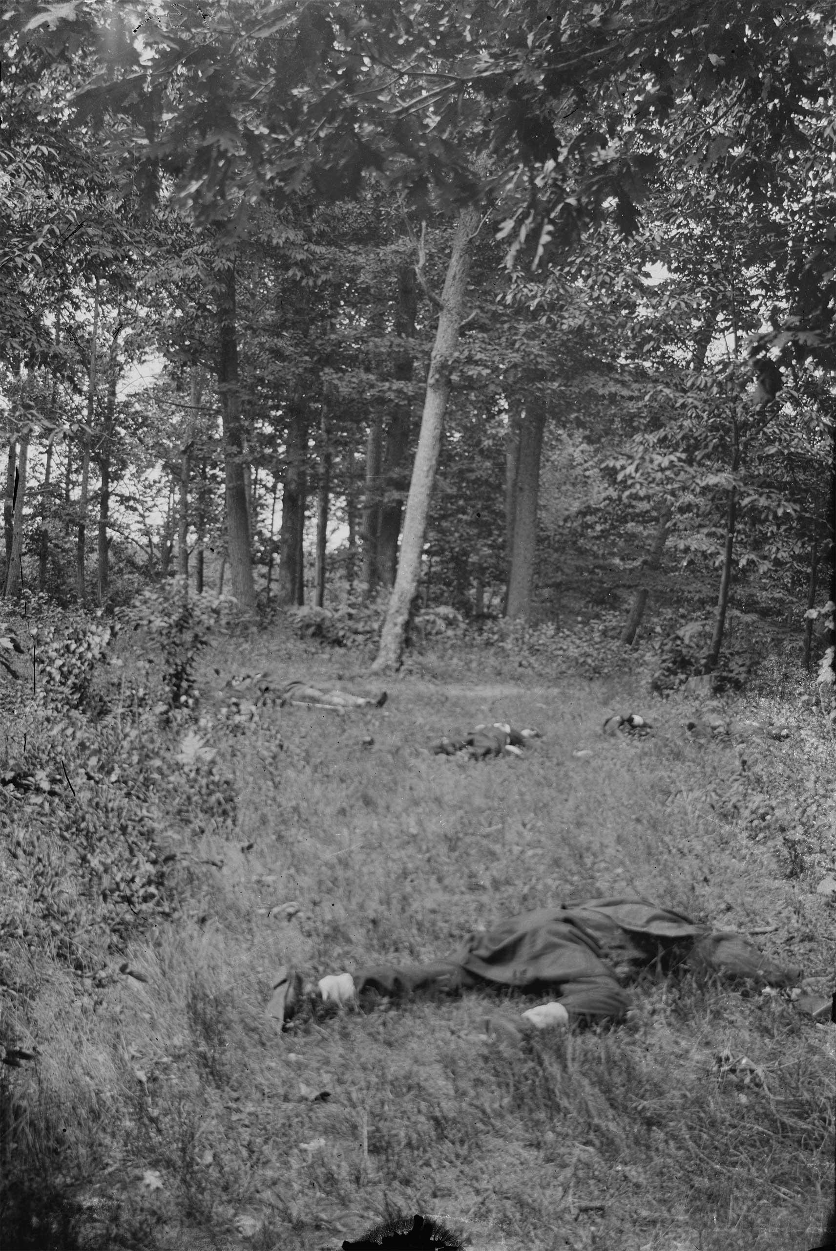 Dead on battlefield at 1st Bull Run, 1862-1865