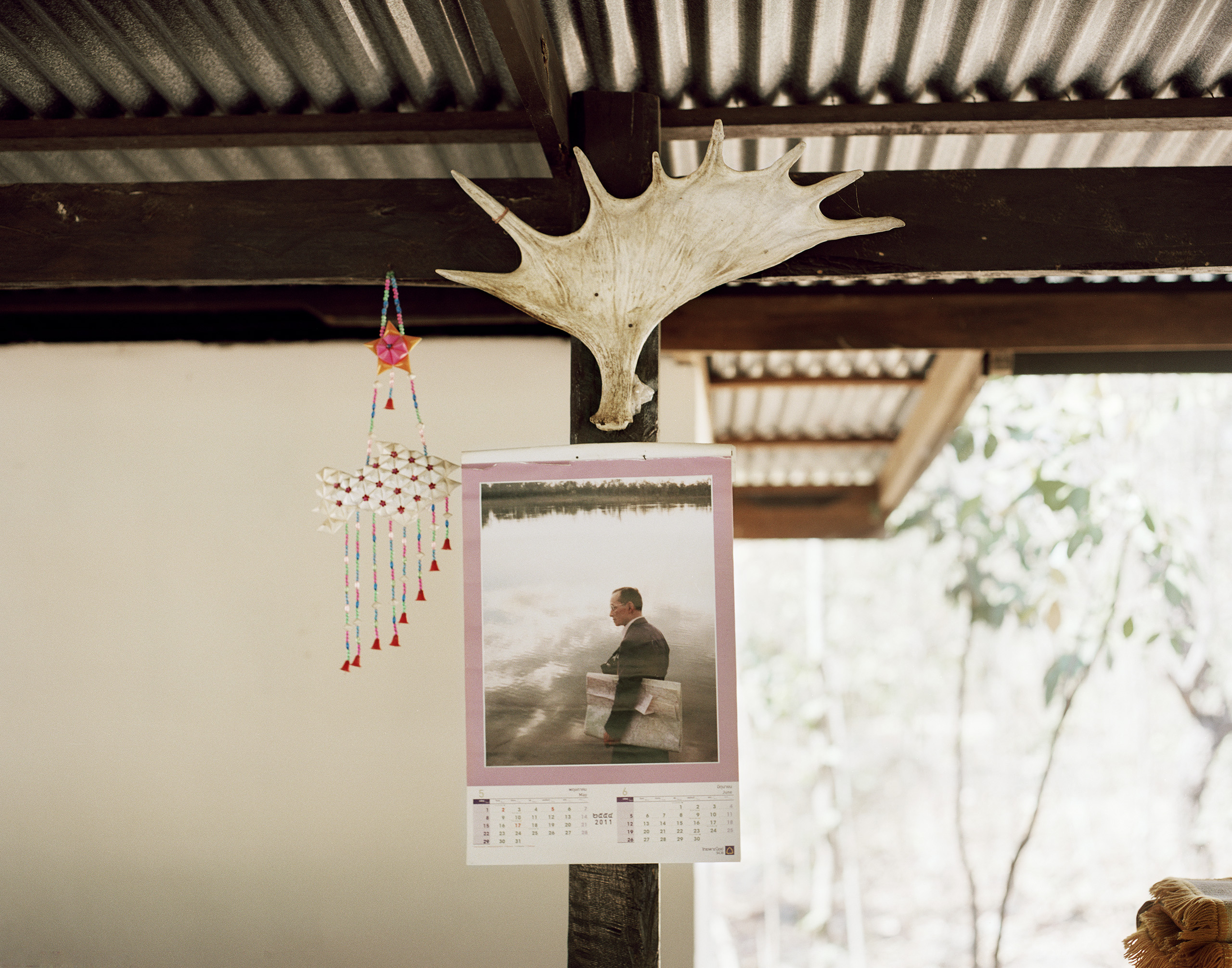 A moose antler hangs above a photo of King Bhumibol Adulyadej, forest temple of Vat Paphadam, Ban Kaeng, 2012.