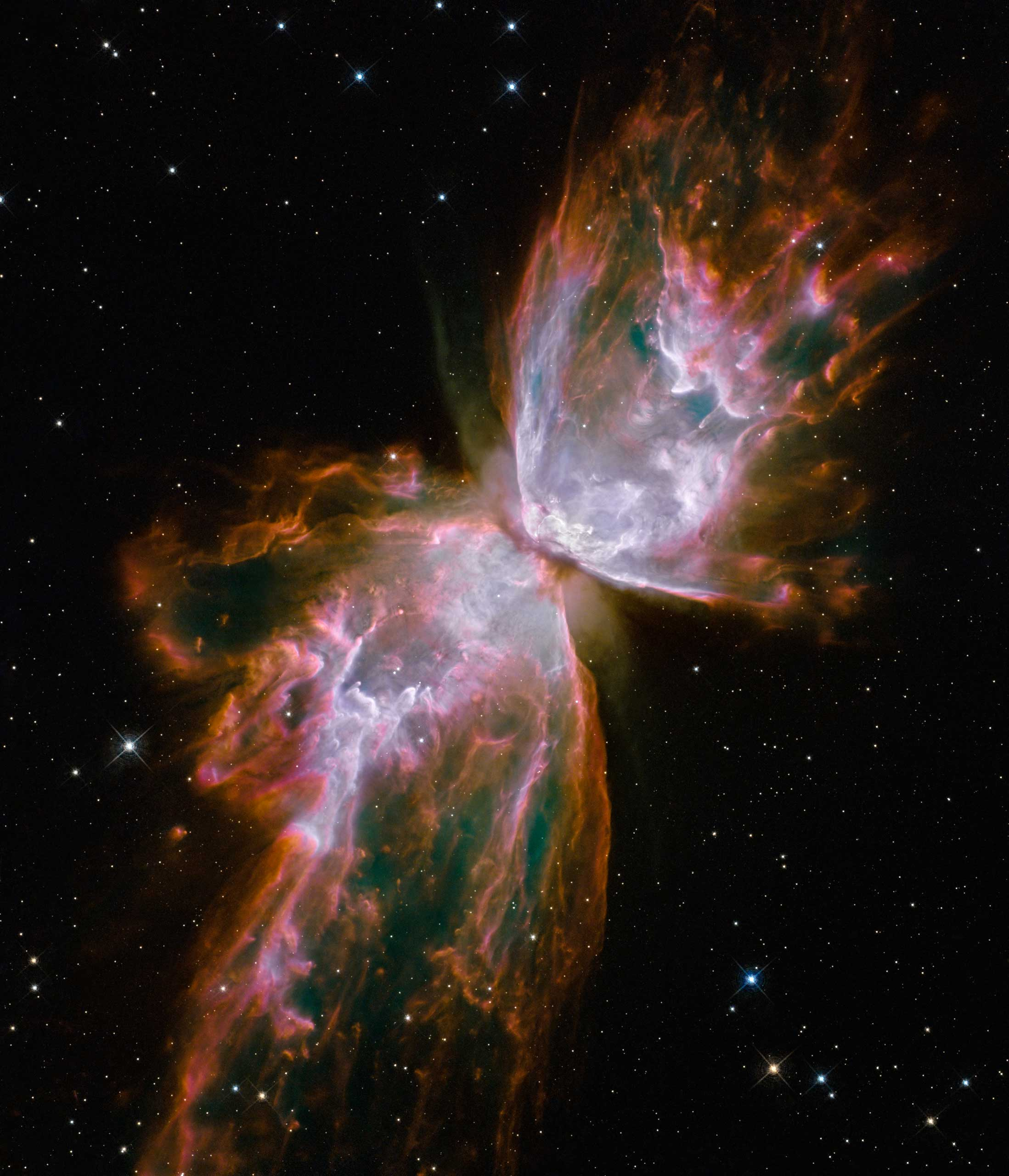 The Butterfly Nebula:                                                              With a wingspan of over 3 light-years and an estimated surface temperature of about 250,000 degrees C, the dying central star of this planetary nebula has become exceptionally hot, shining brightly in ultraviolet light but hidden from direct view by a dense torus of dust. Also known as NGC 6302, the nebula lies about 4,000 light-years away in the constellation of the Scorpion (Scorpius).                                                              Image released on Sept. 9, 2009