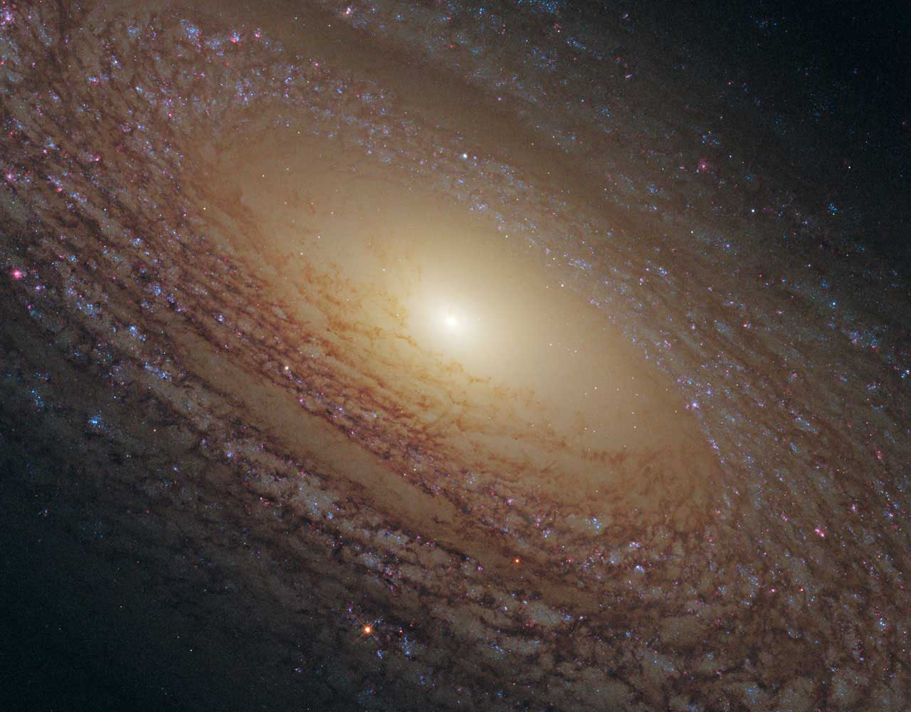 <strong>Spiral Galaxy NGC 2841</strong>:                                                                      A bright white light at the middle of the spiral galaxy marks the galaxy's center. Spiraling outward are dust lanes that are silhouetted against the population of whitish middle-aged stars. Much younger blue stars trace the spiral arms. NGC 2841 lies 46 million light-years away in the constellation of Ursa Major (The Great Bear).                                                                       <i>Image released on Feb. 17, 2010</i>