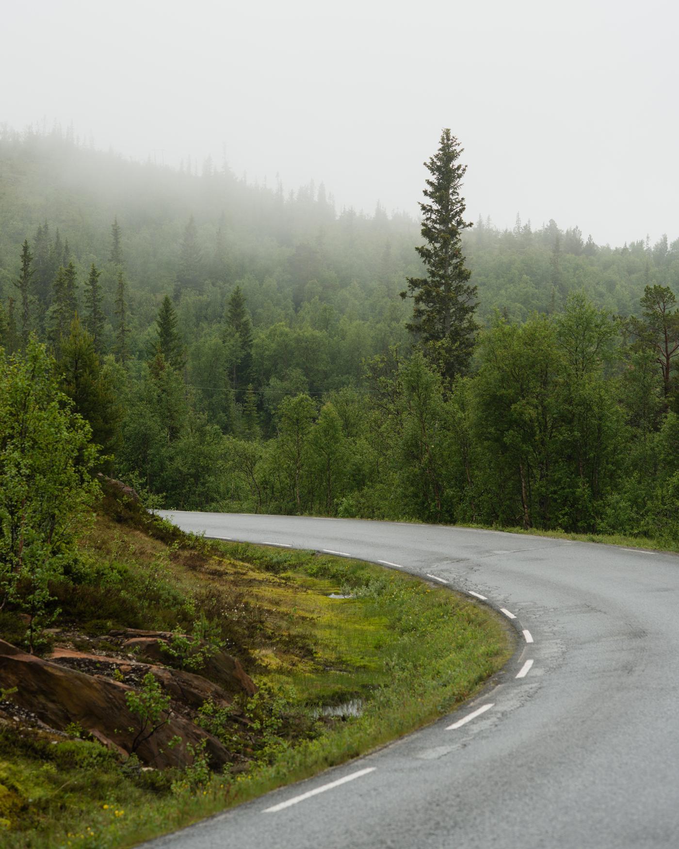 Hessdalen, light summer rain. June 2013.