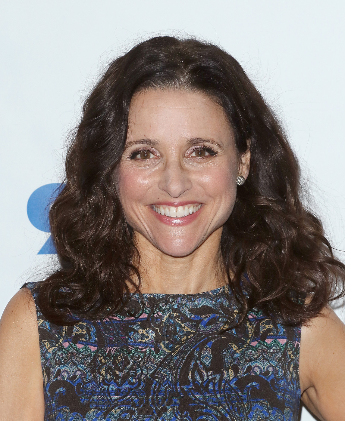 Actress Julia Louis-Dreyfus attends 92nd Street Y Presents: Julia Louis-Dreyfus in Conversation with Frank Rich at 92nd Street Y on April 9, 2015 in New York City.